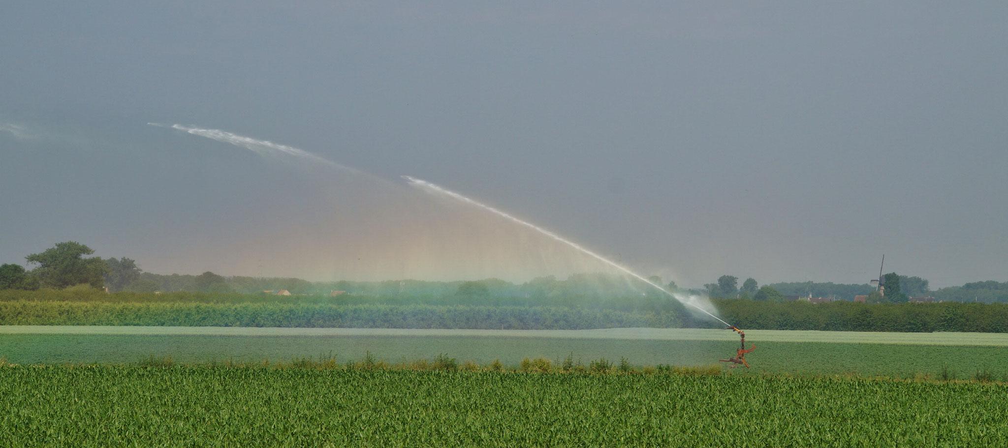 Wasserspender erzeugen künstliche Regenbögen