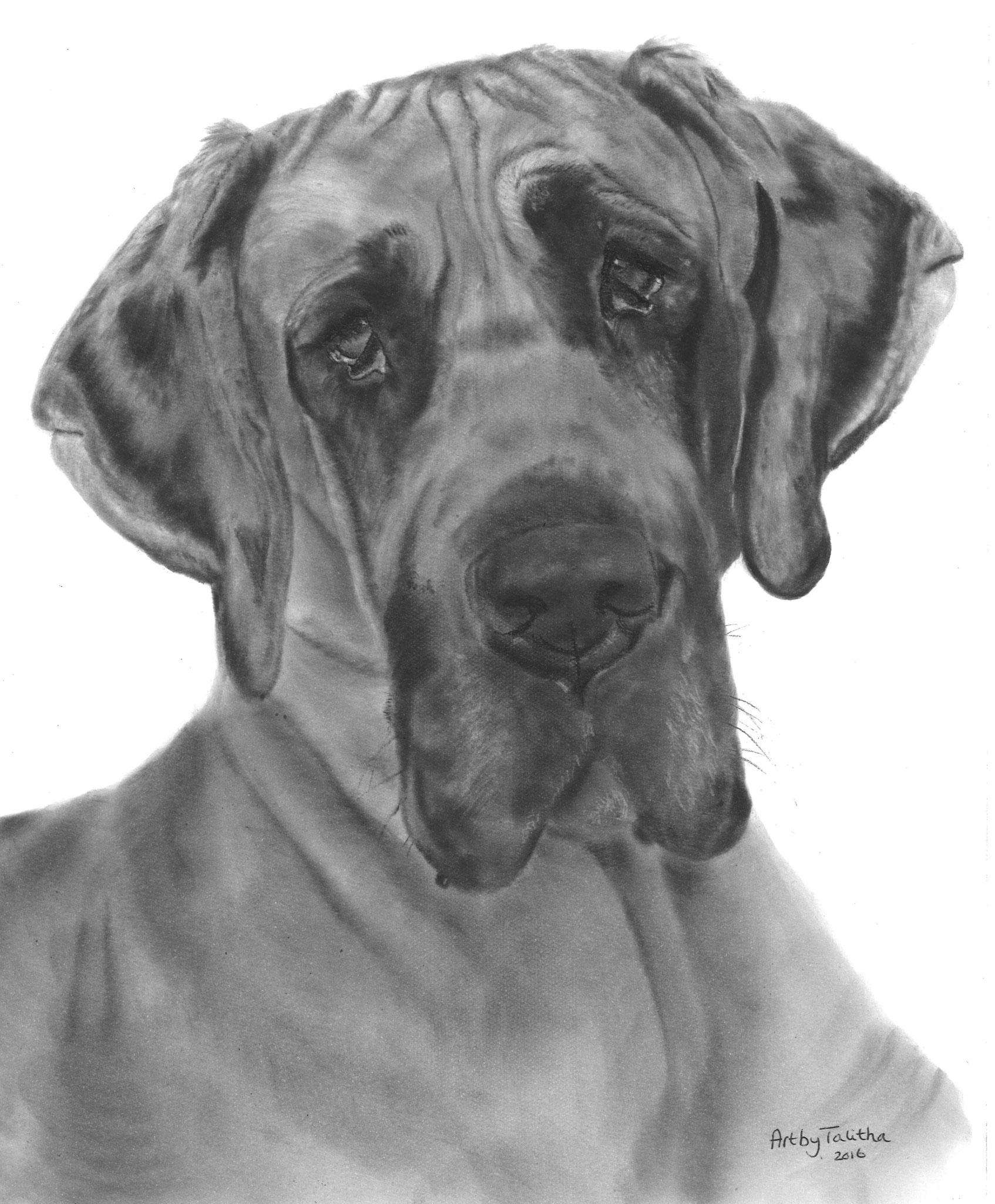 In liefdevolle herinnering aan 'Fayah de Duitse Dog'