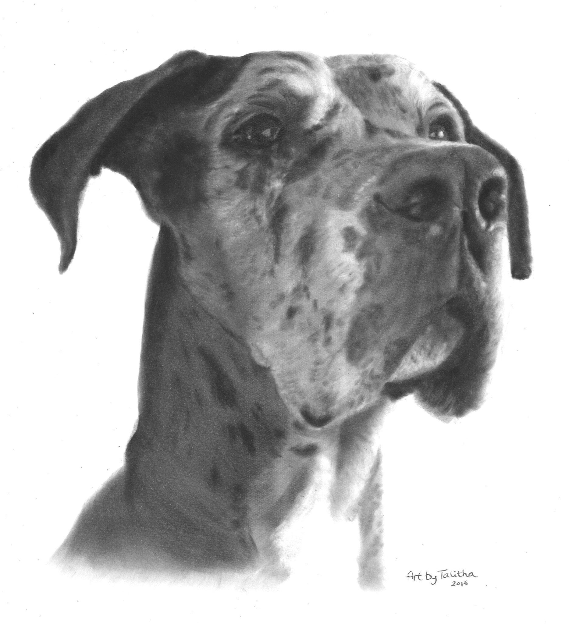 'In liefdevolle herinnering aan Titan de Duitse Dog'