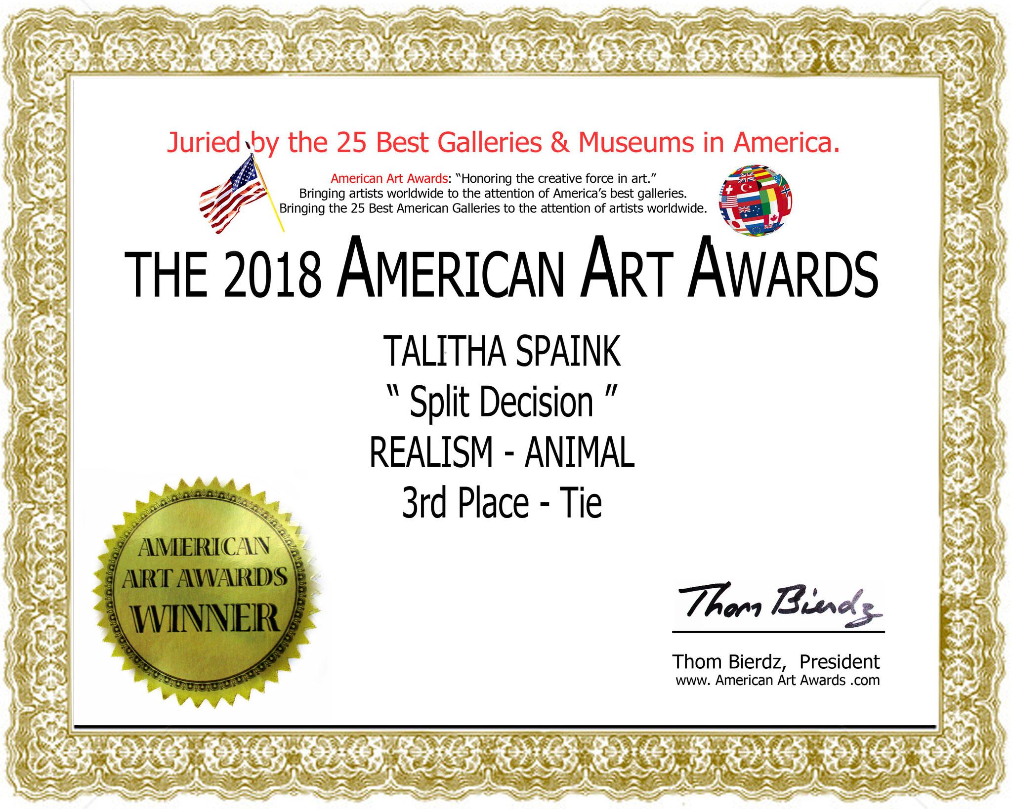 Mijn gewonnen 'American Art Award 2018'