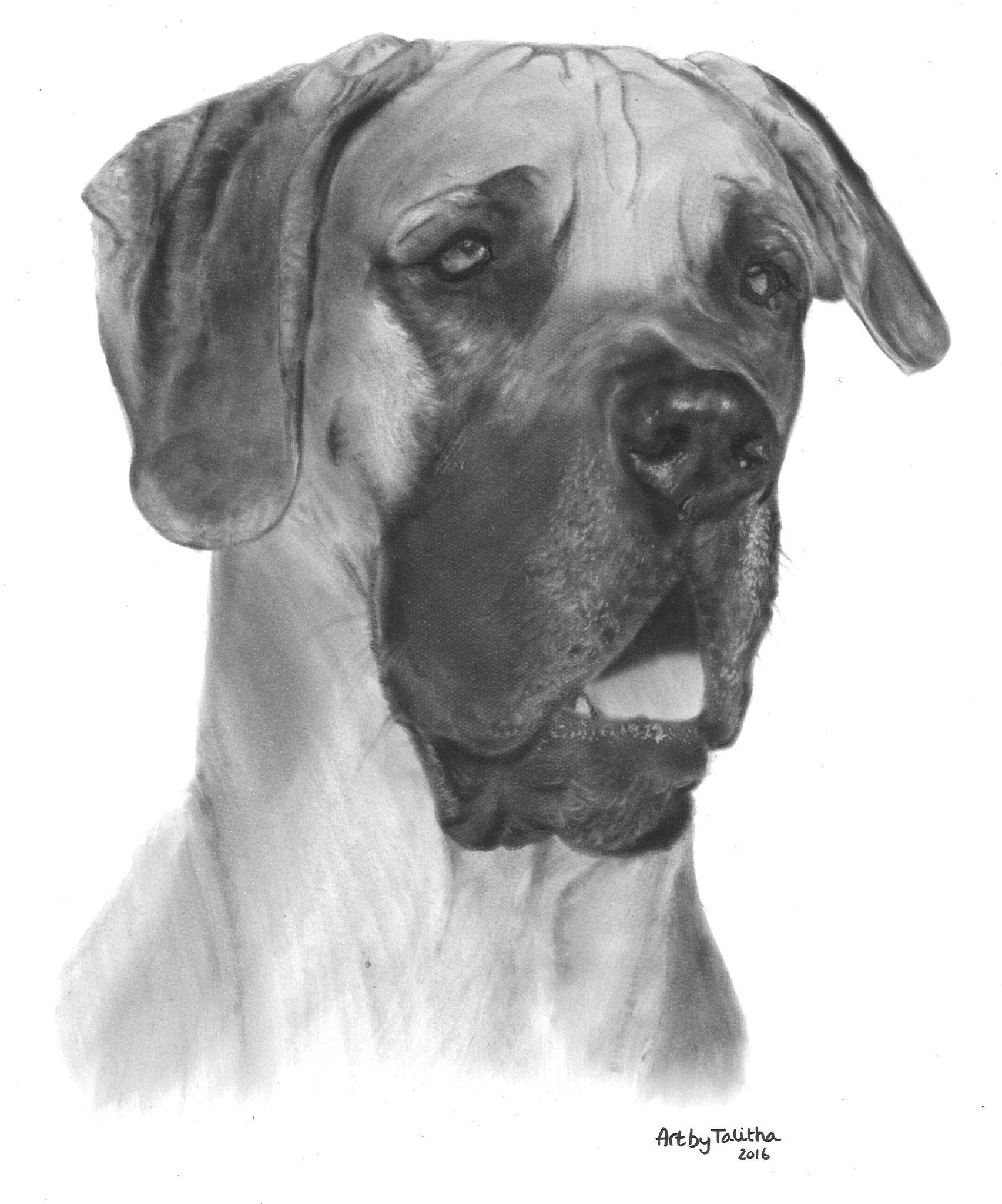 'In liefdevolle herinnering aan Denzel de Duitse Dog'