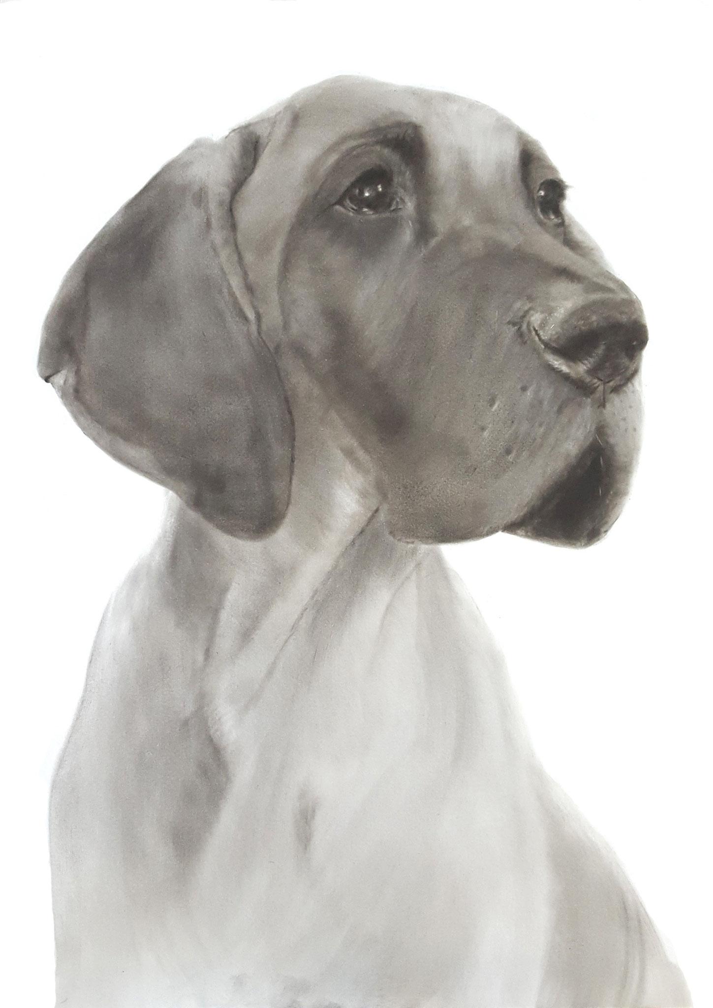 In liefdevolle herinnering aan 'Charlotte de Duitse Dog'