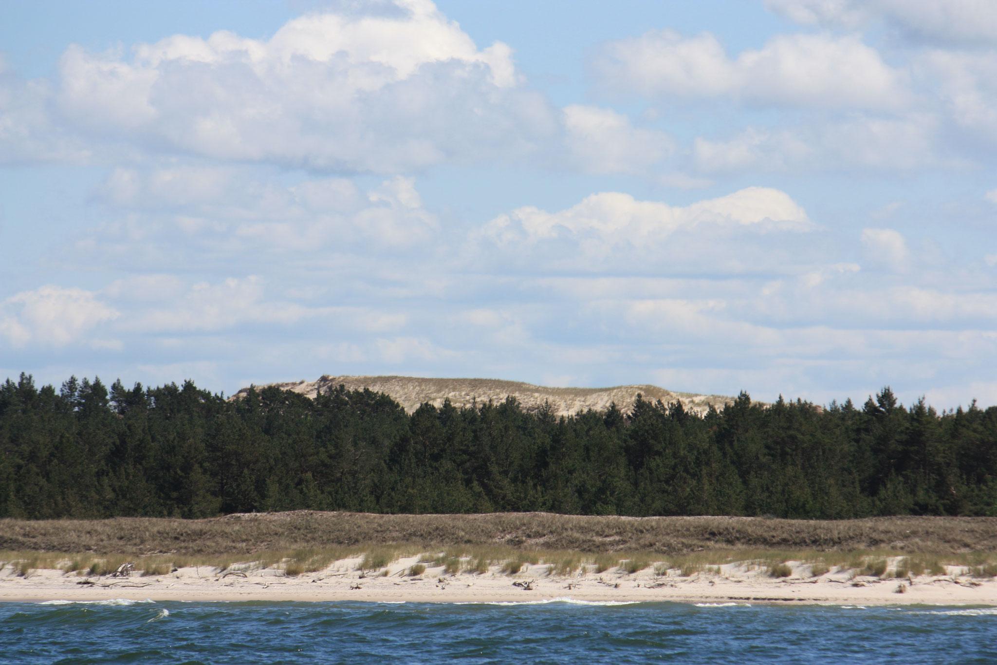 Wanderdünen von Leba, etwa 45m hohe Sandberge...
