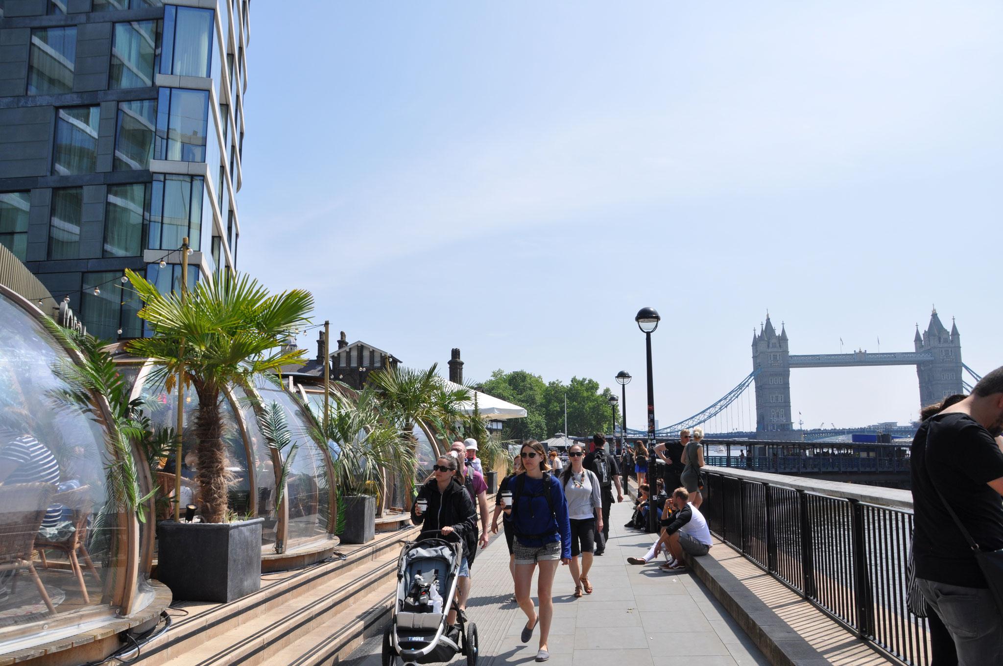 Enjoy the Thames