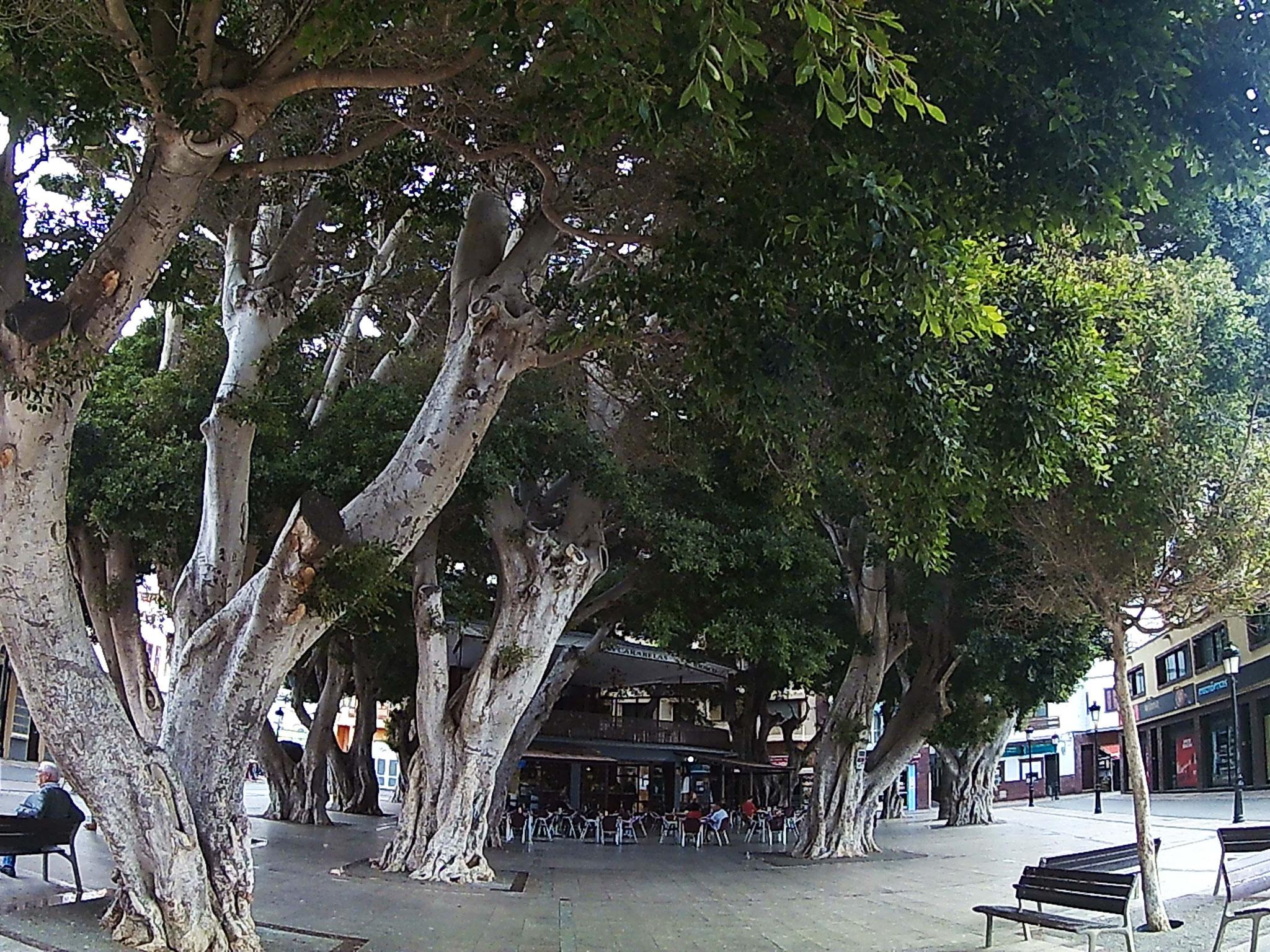 Zentraller Marktplatz von San Sebastian auf La Gomera - Ausspannen und ein Baraquito genießen