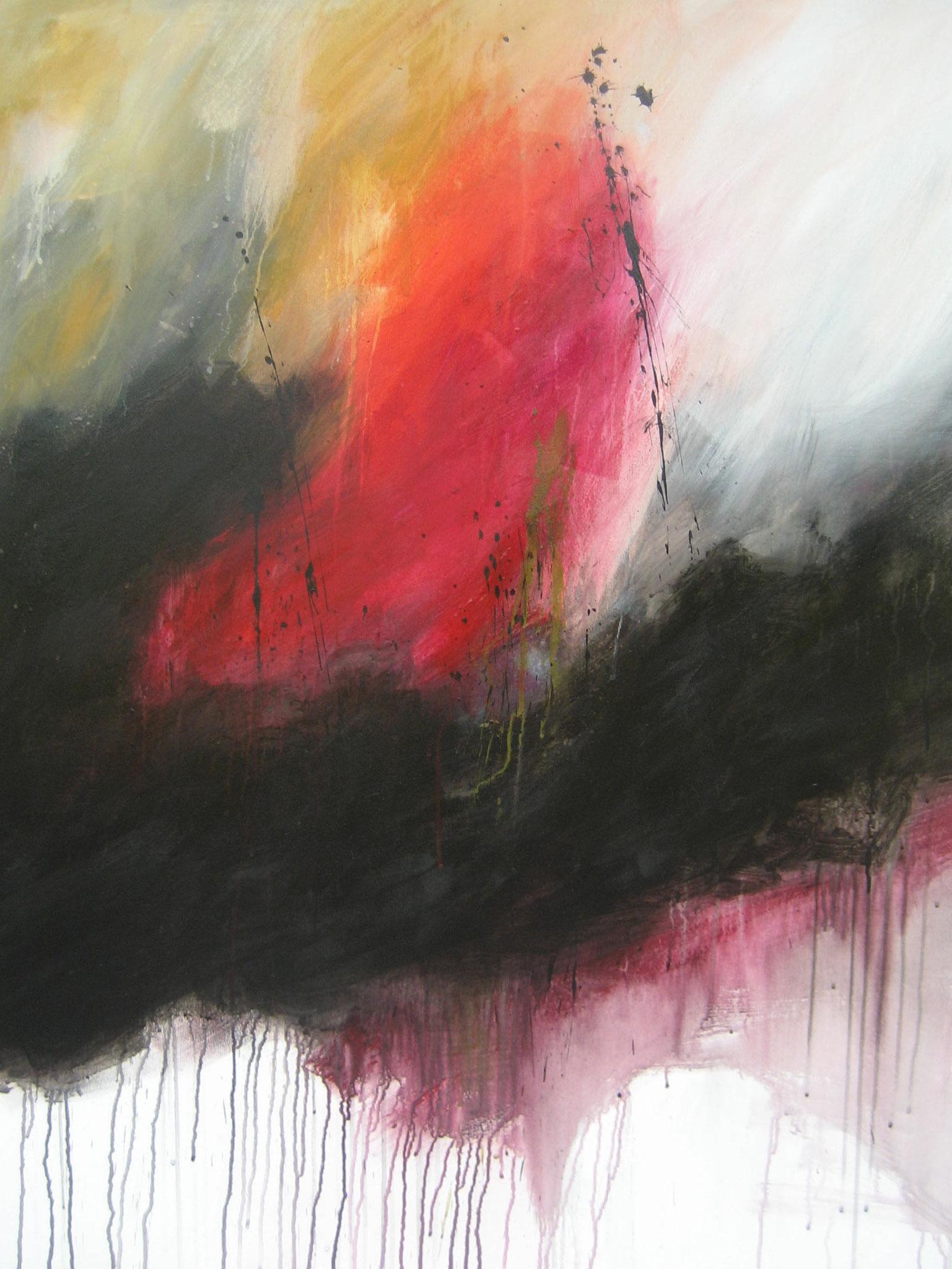 """Série """"Les Montagnes Blanches"""" - La Folie - 116 x 89 cm - 2014"""