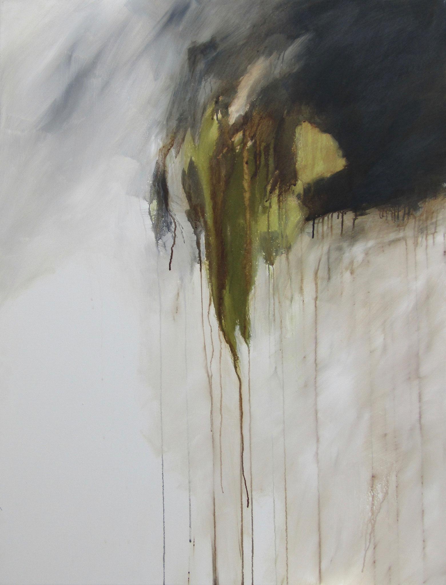 """Série """"Les Montagnes Blanches"""" - La Chute - 116 x 89 cm - 2012"""