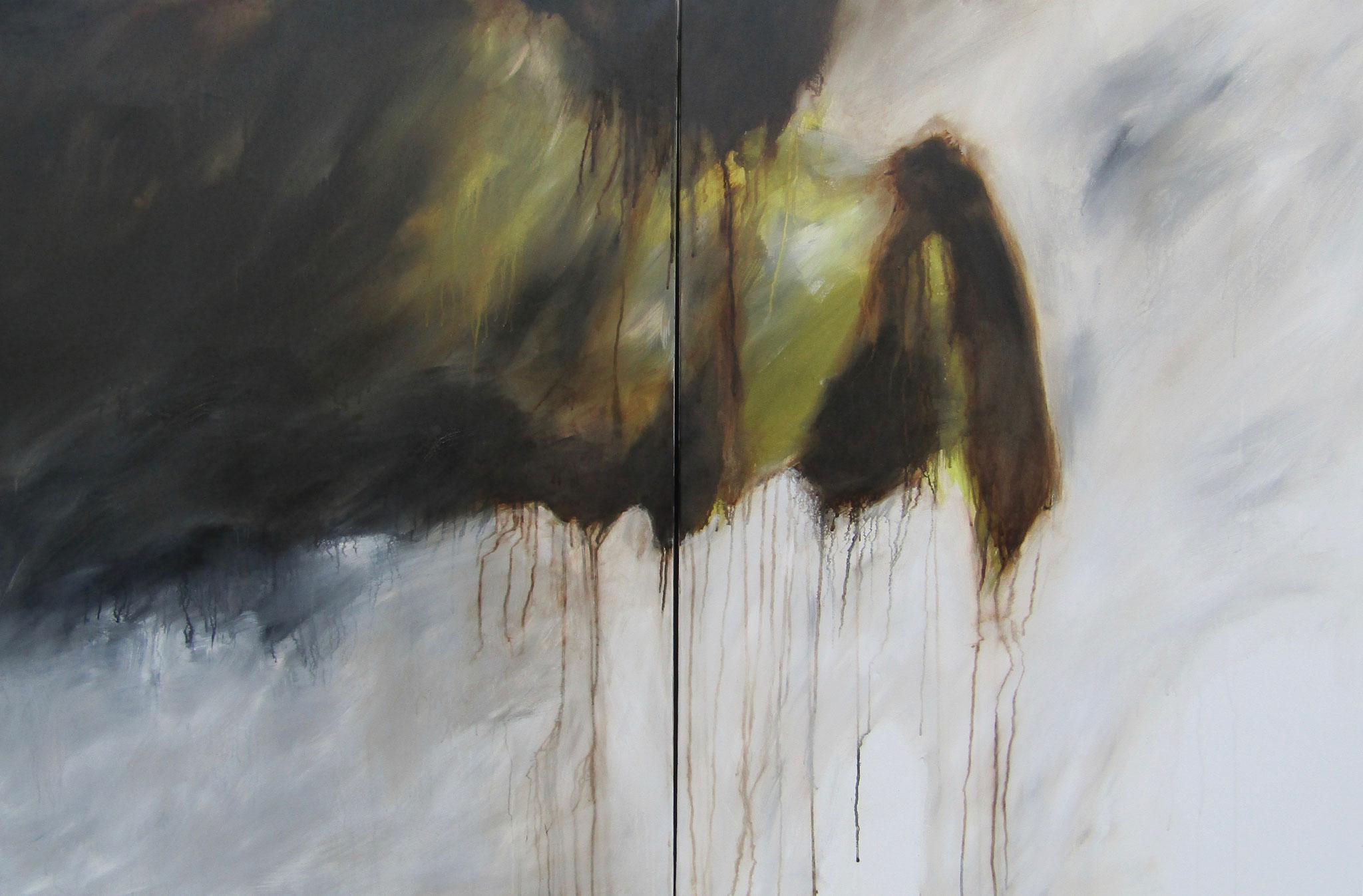 """Série """"Les Montagnes Blanches"""" - Le Précipice (Diptyque) - 178 x 89 cm - 2012"""