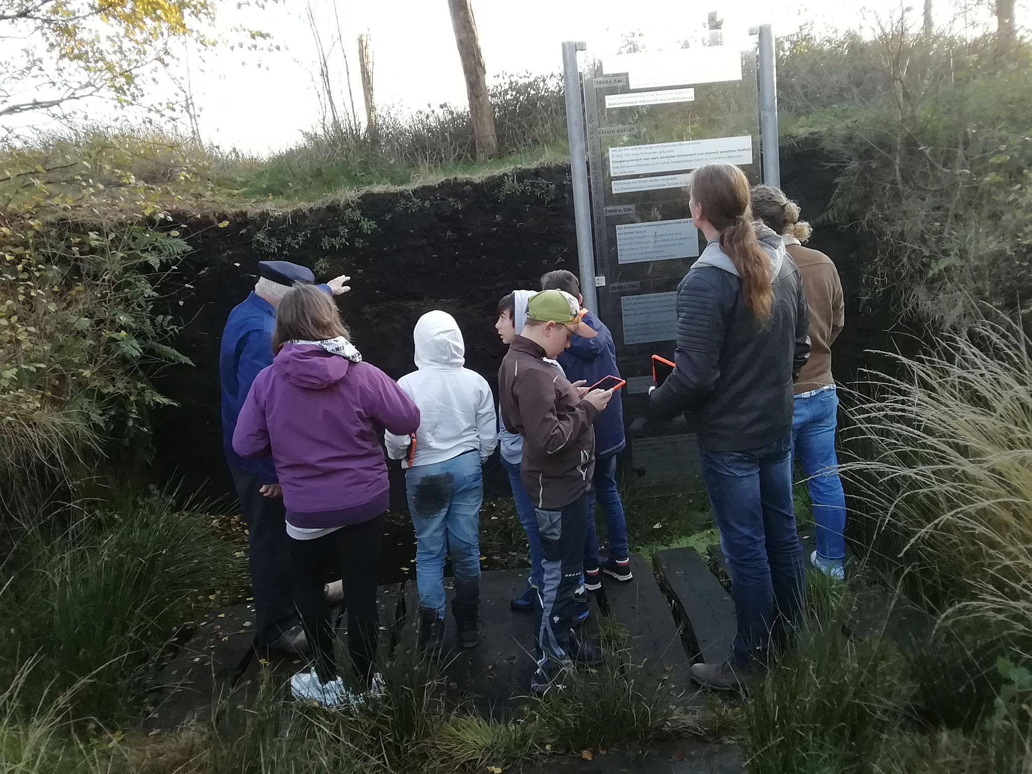 Herr Wehmhoff hat uns durch das Moor geführt - zur Hörstation bitte auf das Bild klicken!