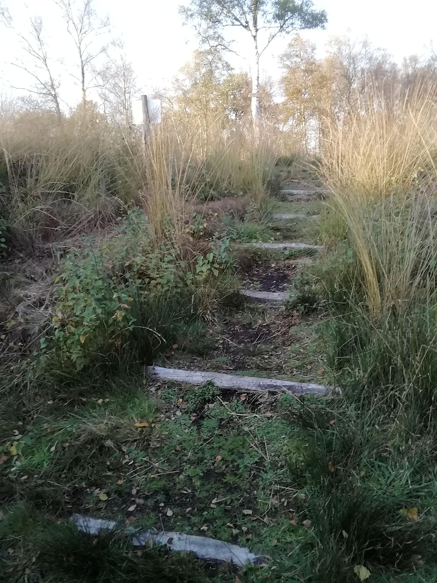 Auf diesem Holzbalken wurden die Schlitten mit Moor transportiert - zur Hörstation bitte auf das Bild klicken!