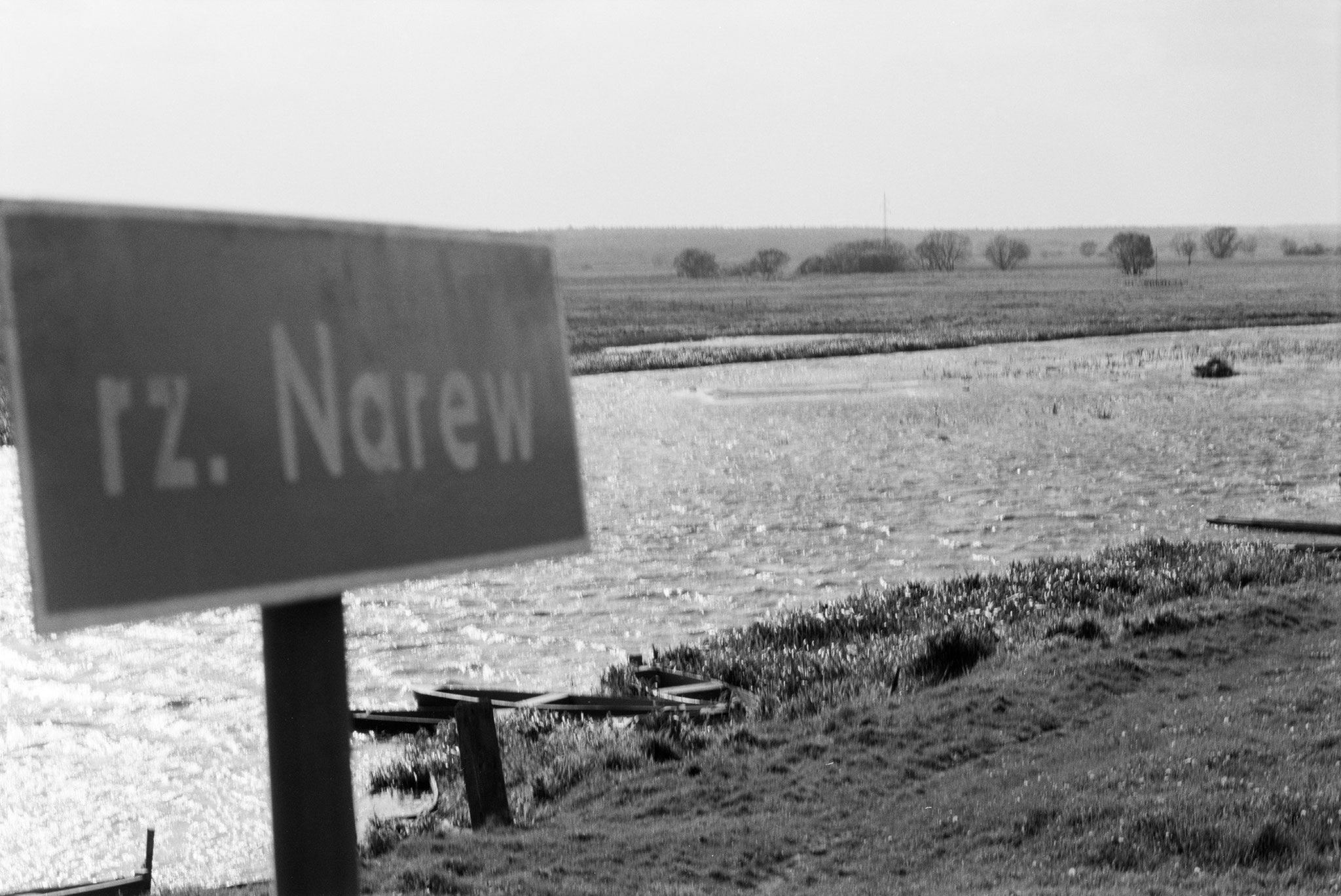 Der Narew