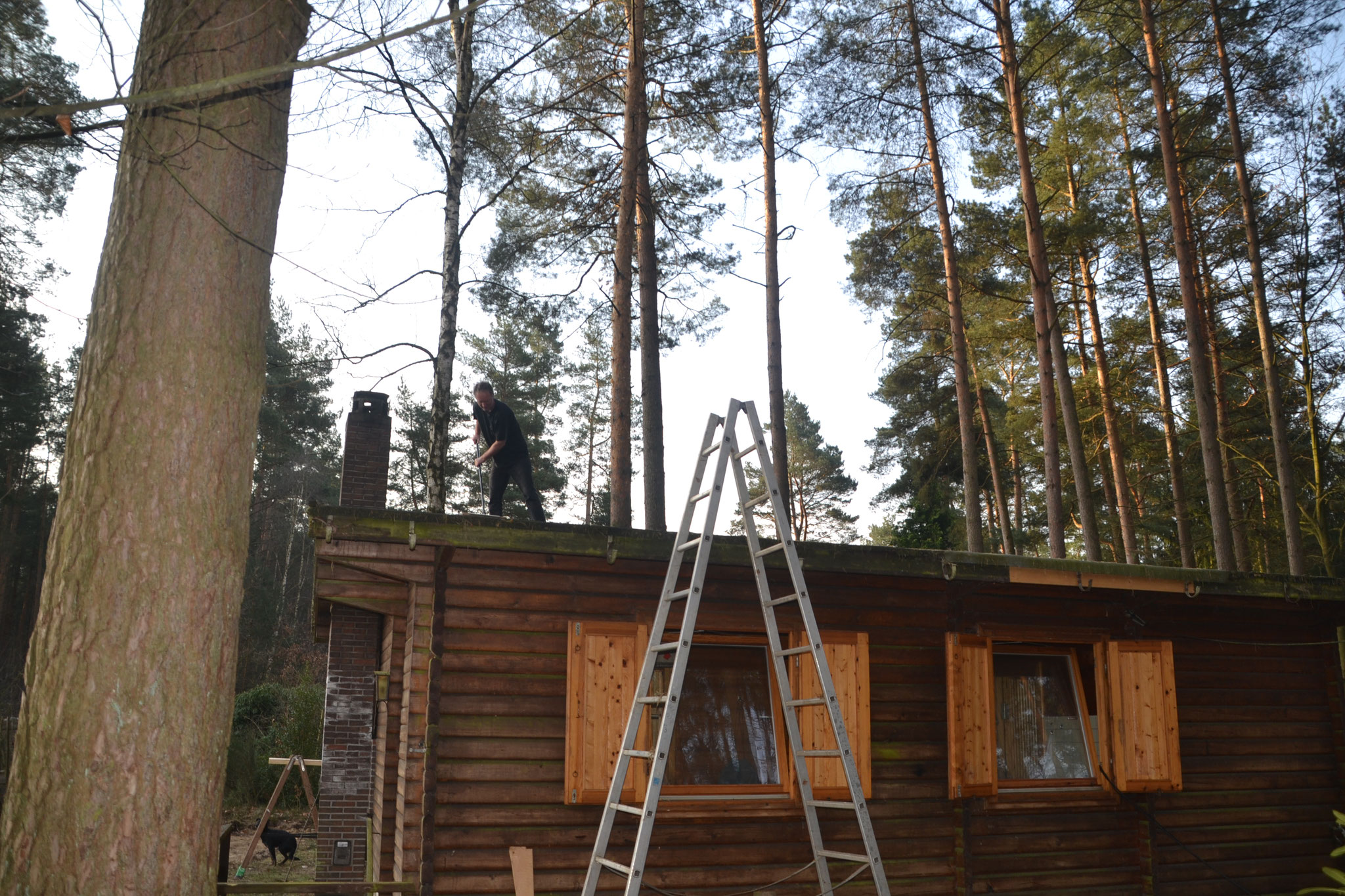 Dann bekommen die Häuschen, eines nach dem anderen, ein neues Dach ...