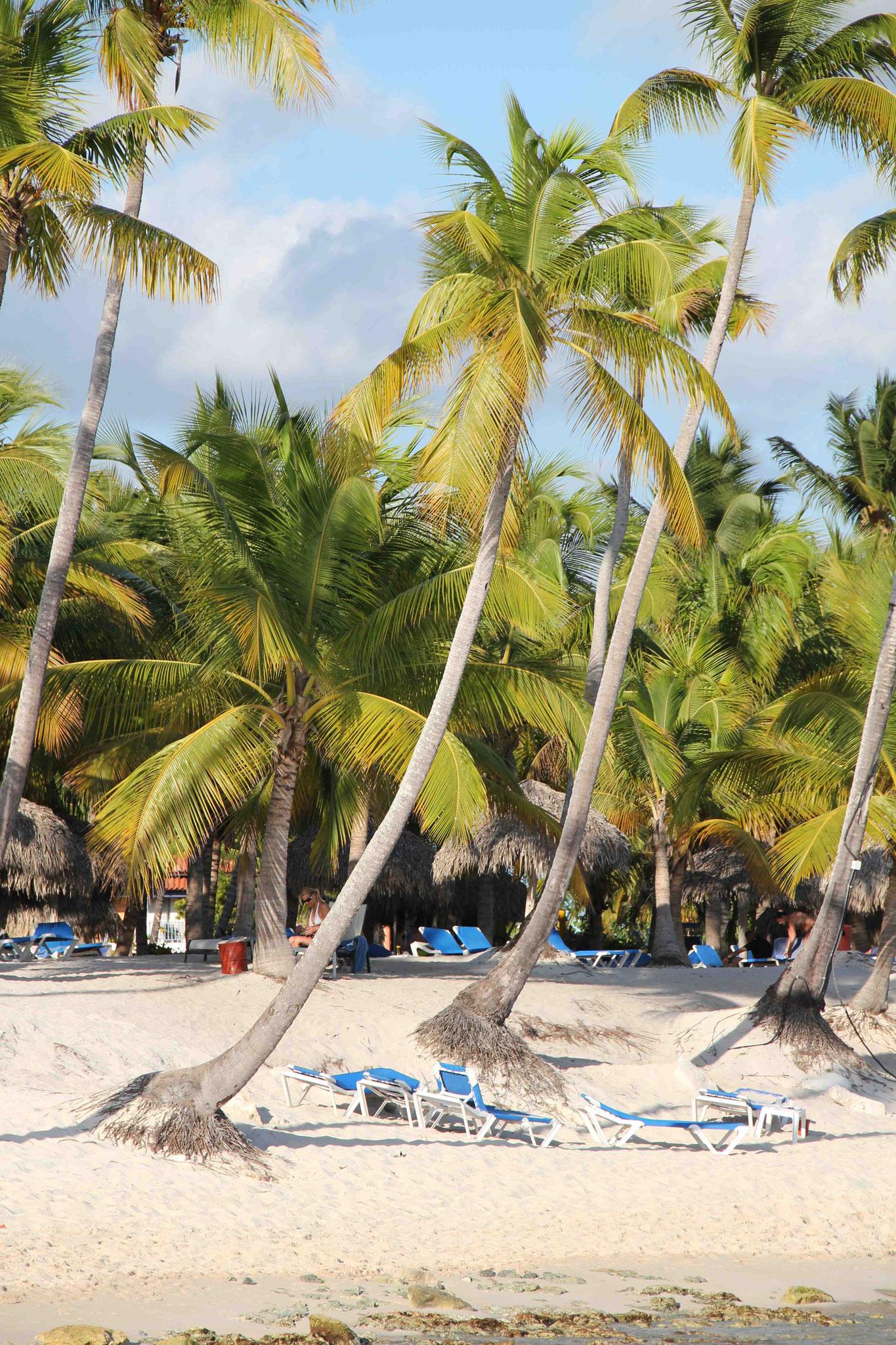 Traumurlaub Karibik