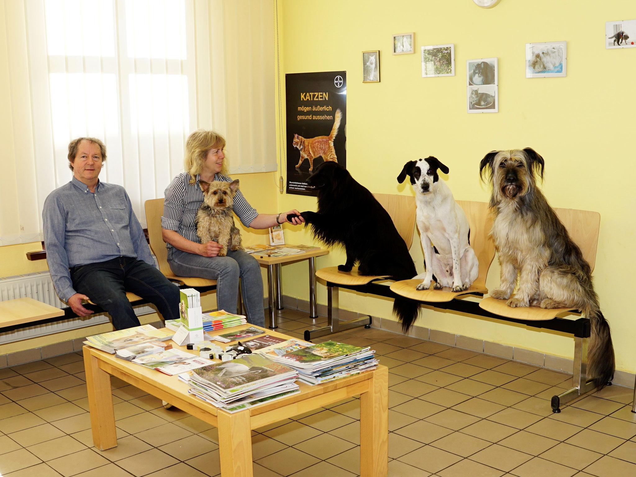 Dr. Frauke Brackmann-Gräf und Dr. Friedemann Gräf mit Bruno, Happy, Anton und Lucy