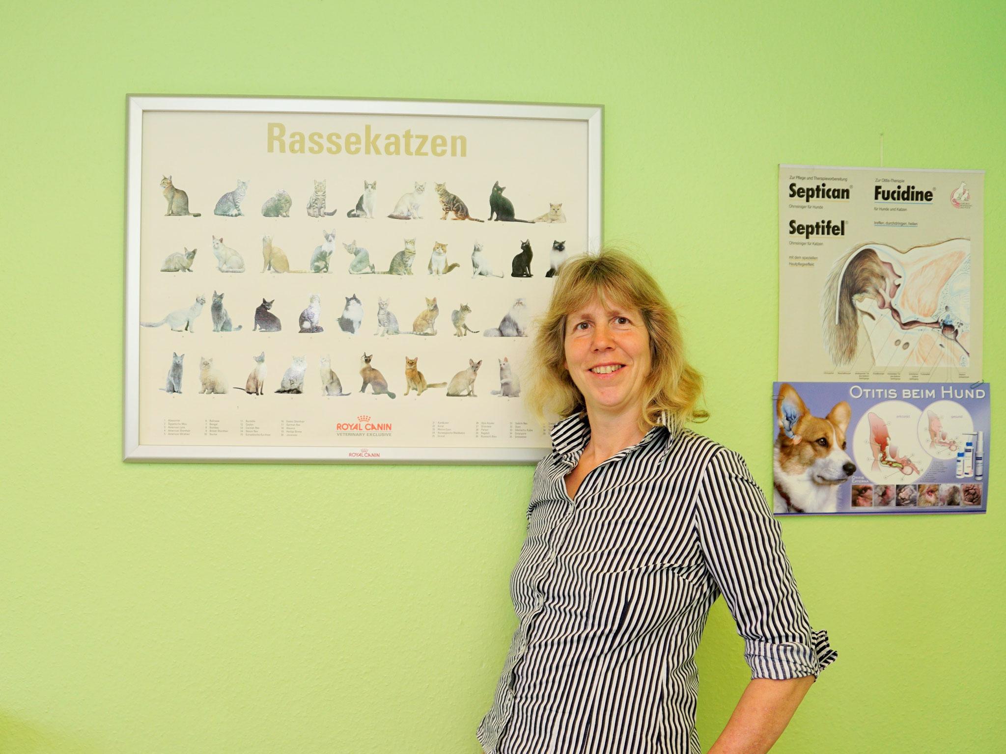 Katzen werden in der Regel von Dr. Frauke Brackmann-Gräf behandelt.