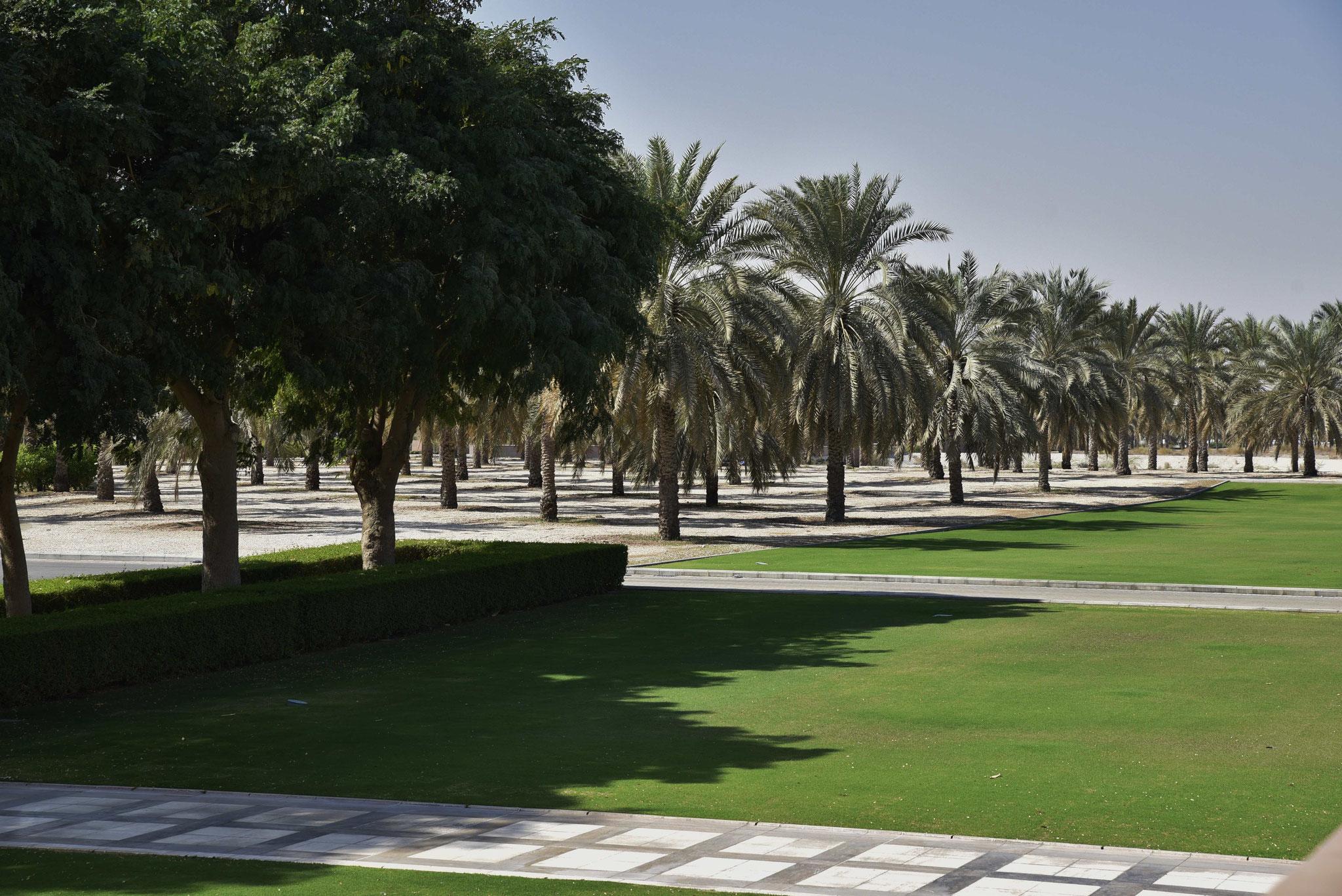 Grünanlage direkt neben der Moschee- ...