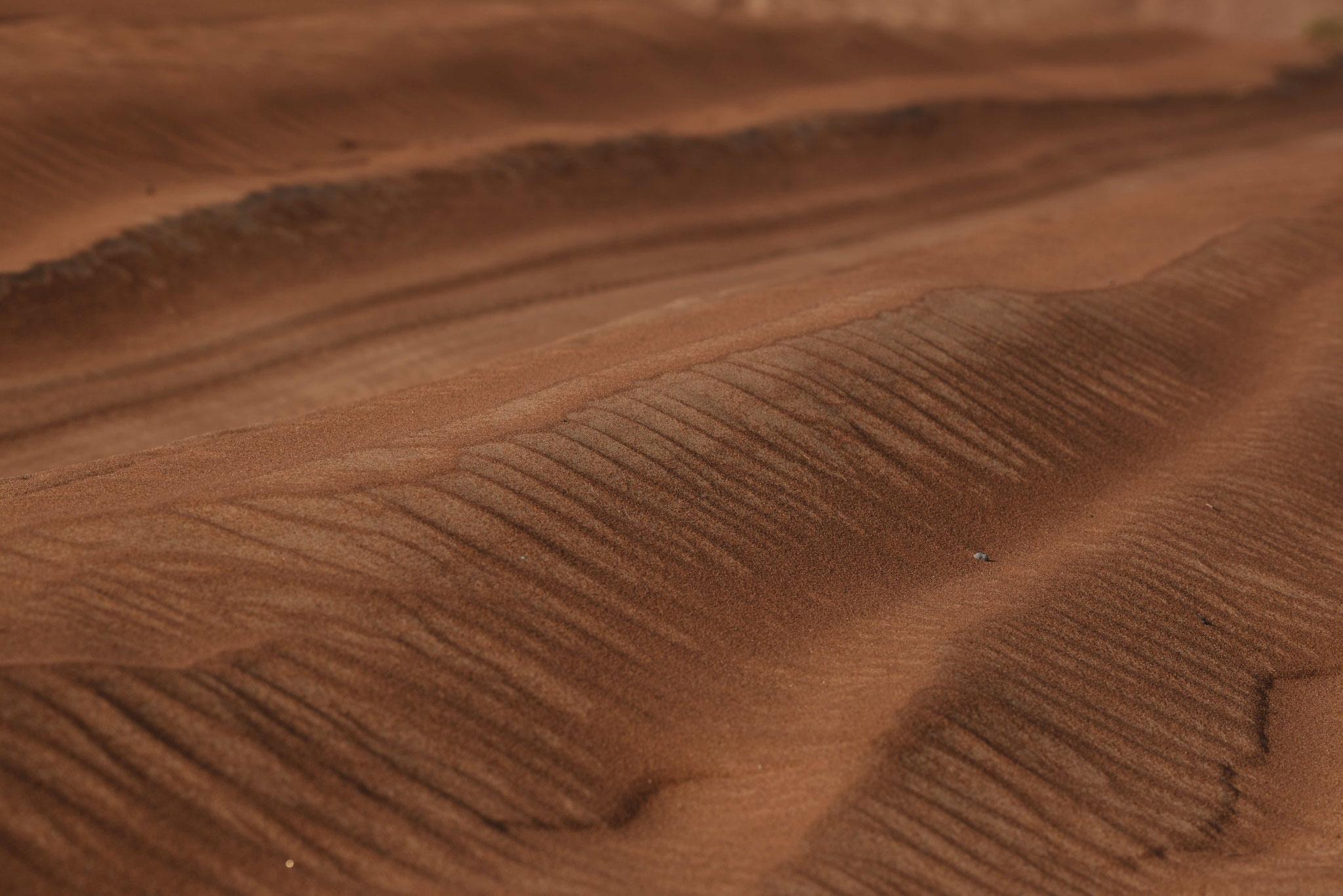 Spuren im Sand I