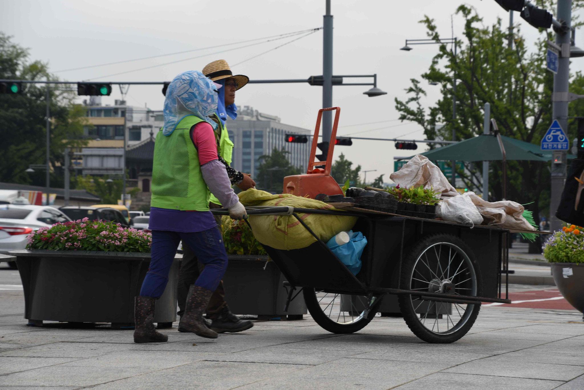 Rentner pflegen die Grünflächen und Stadt