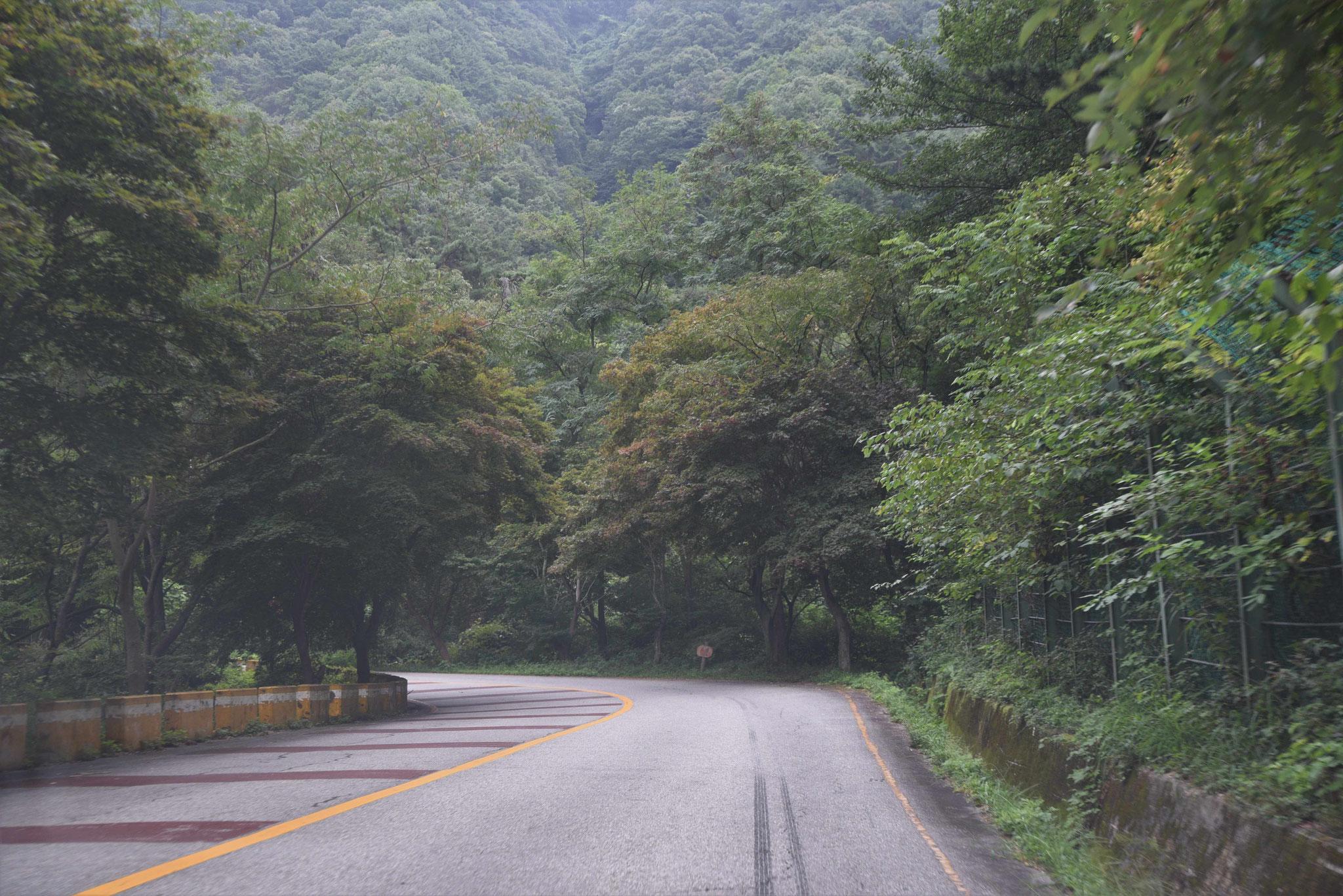 Sehr kurvig geht es in die Berge der Jirisan-NP