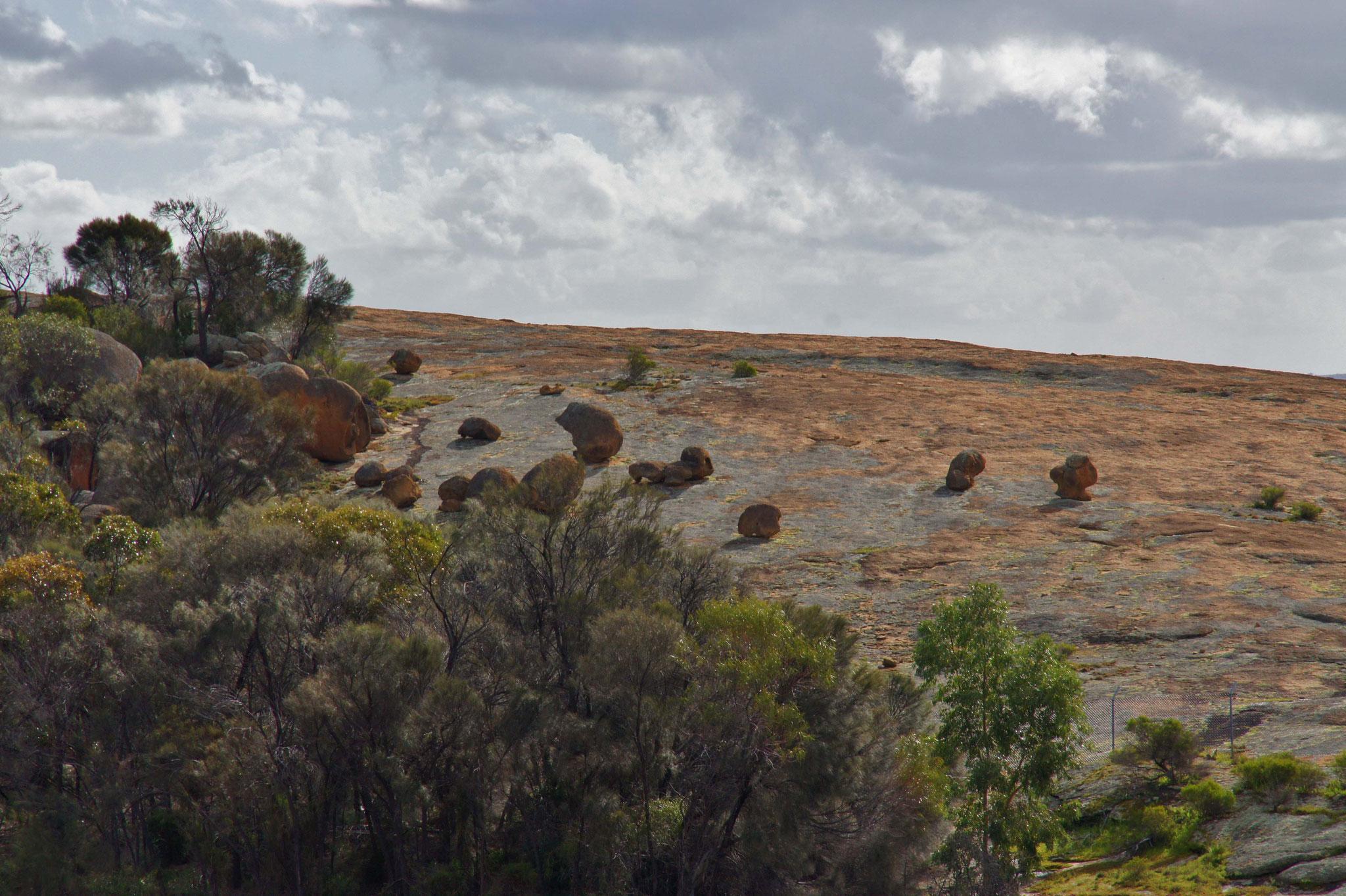 """""""Rollende Steine"""" überhalb vom Wave Rock, Hyden, Westaustralien"""