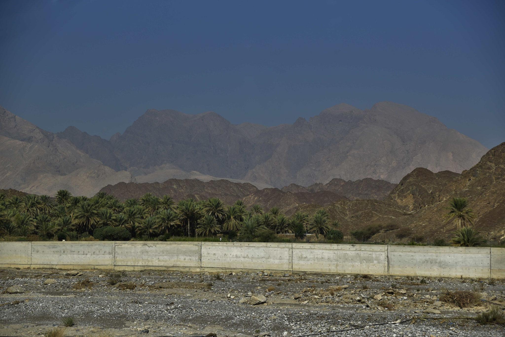 Die Mauer vor der Palmen schützt bei sturzflutartigen Regenfällen