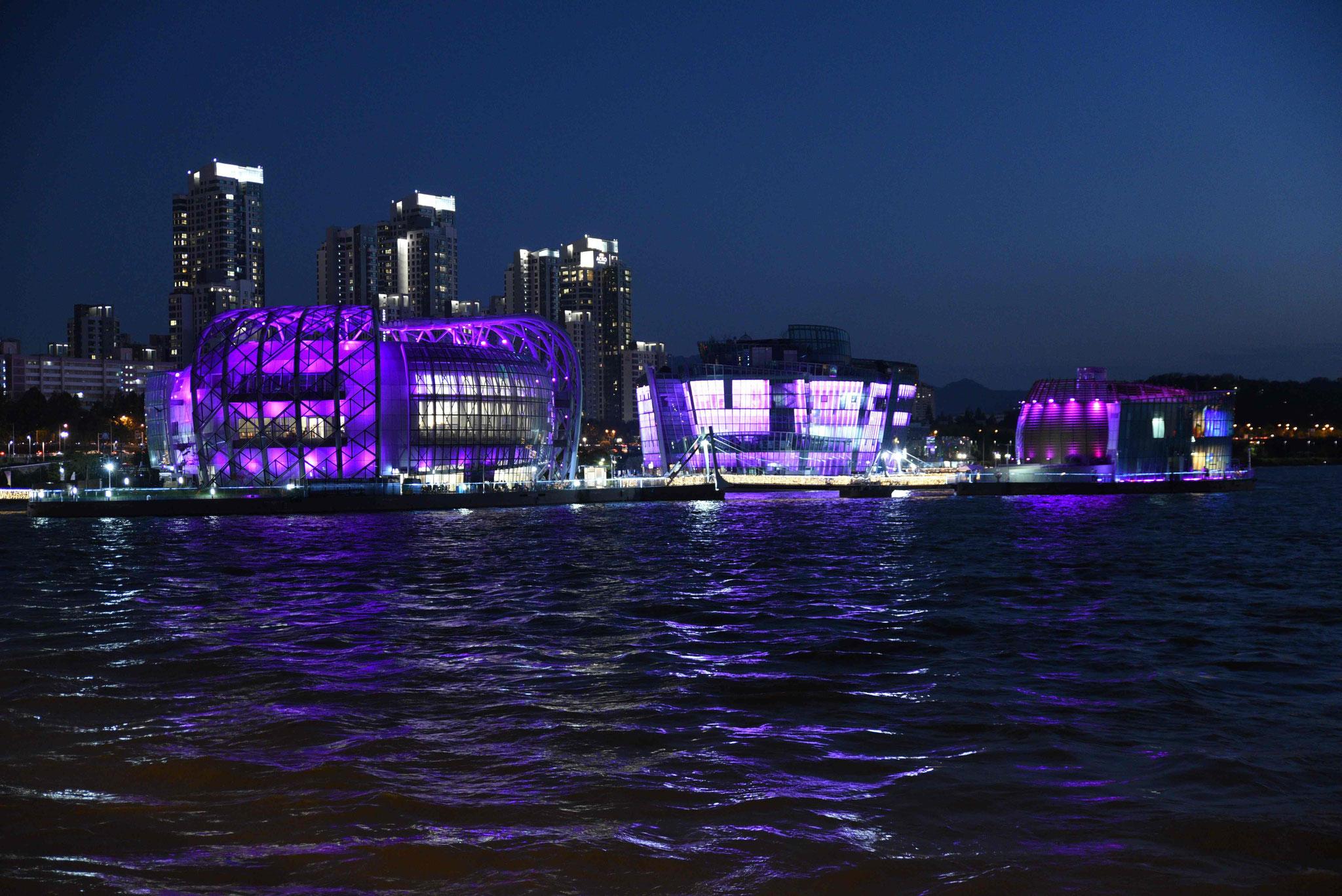 Some Sevit in violett - vom unteren Teil der Banpo-Brücke