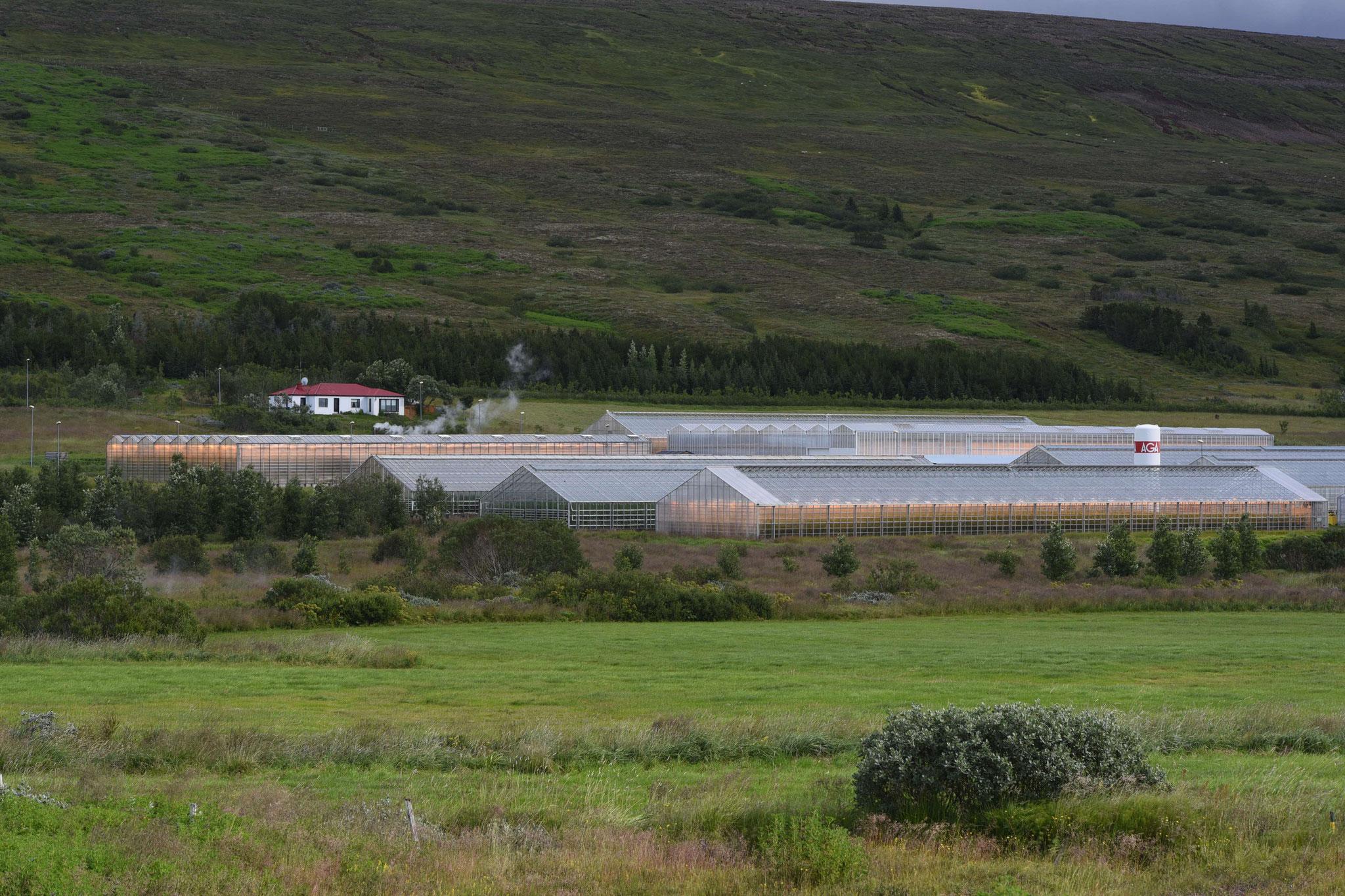 Gewächshäuser mit Geothermieunterstützung
