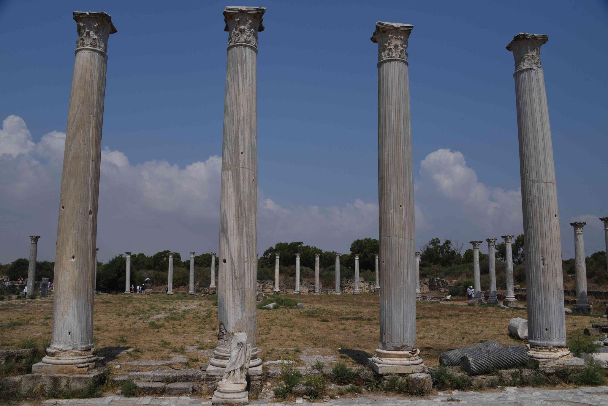 Säulen der Palästra I