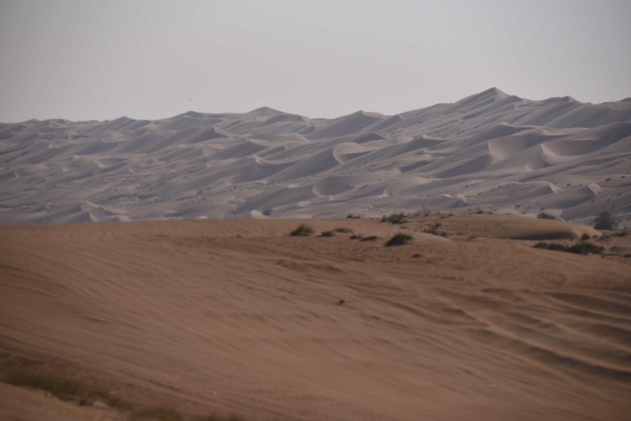Dünen im Hintergrund, Sandpiste im Vordergrund