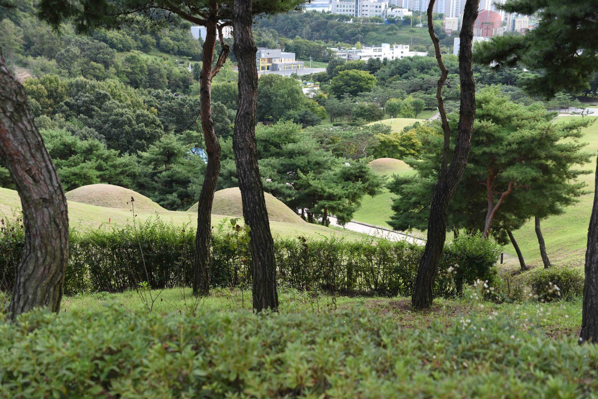 Inmitten von Gongju befinden sich die Grabfelder