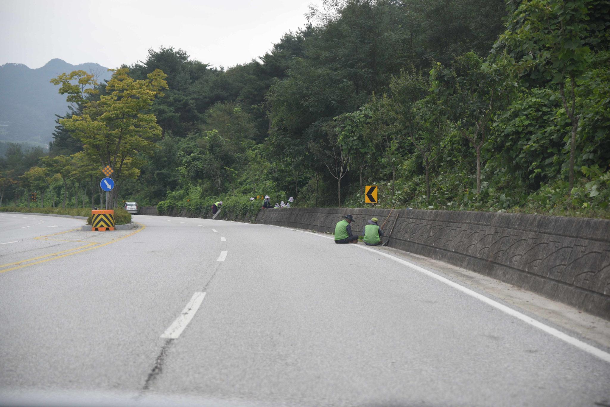 Pflege der Grünfläche an einer Landstraße
