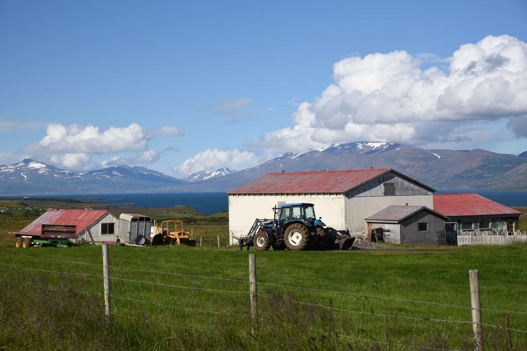 Bauerngehöft bei Akureyri