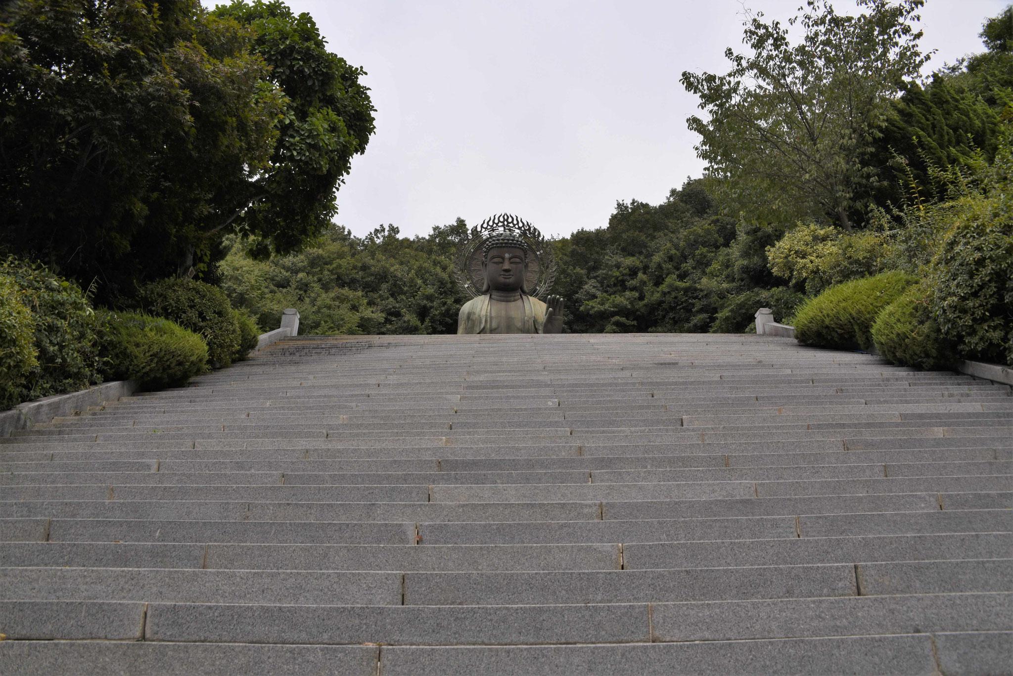 Von hier aus sieht man noch nichts von den 1000 Buddhas