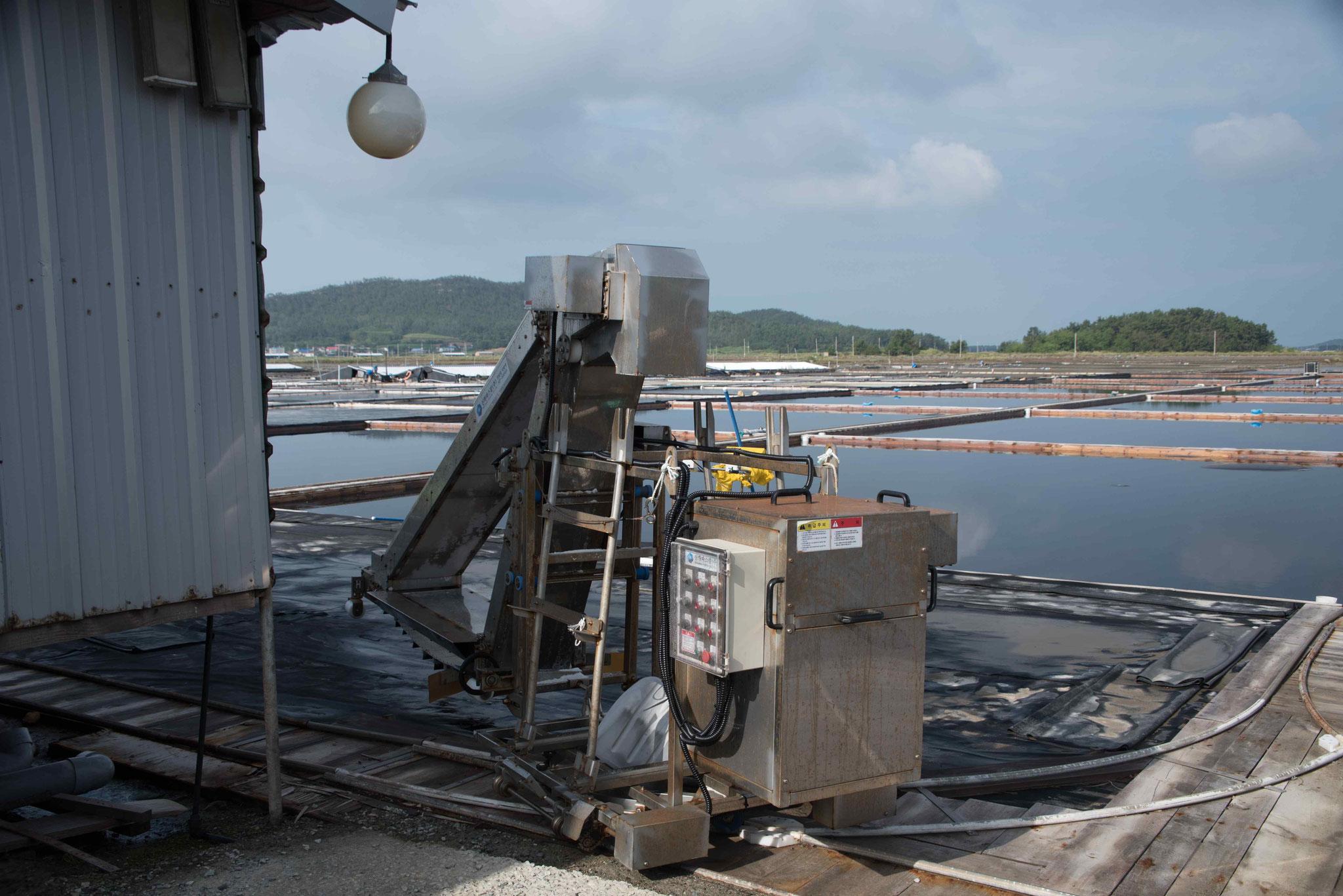 Salzbeförderung in eine Lore