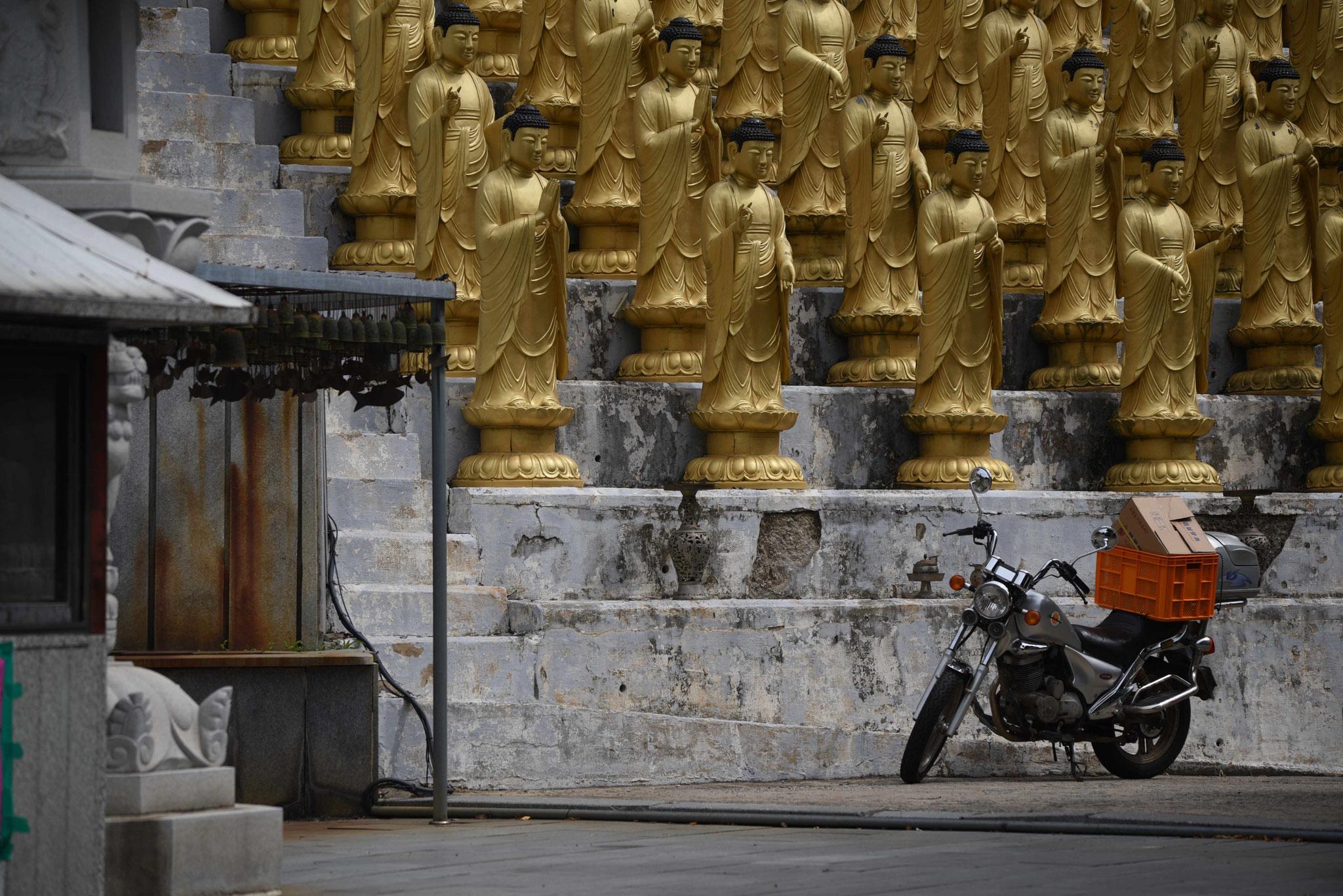 Ein Mönch kam mit dem Moped...