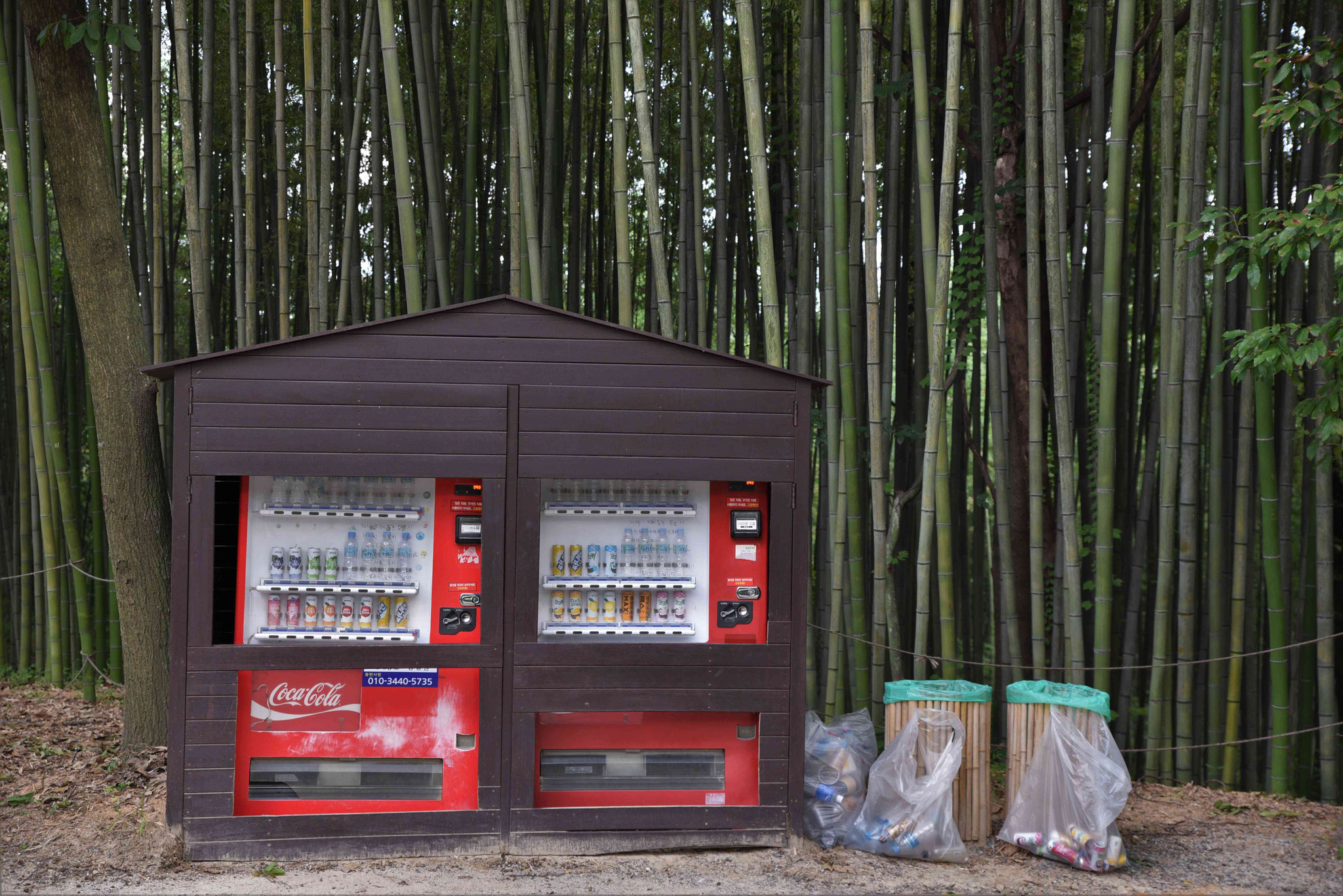 Getränkeautomaten mit im Wald