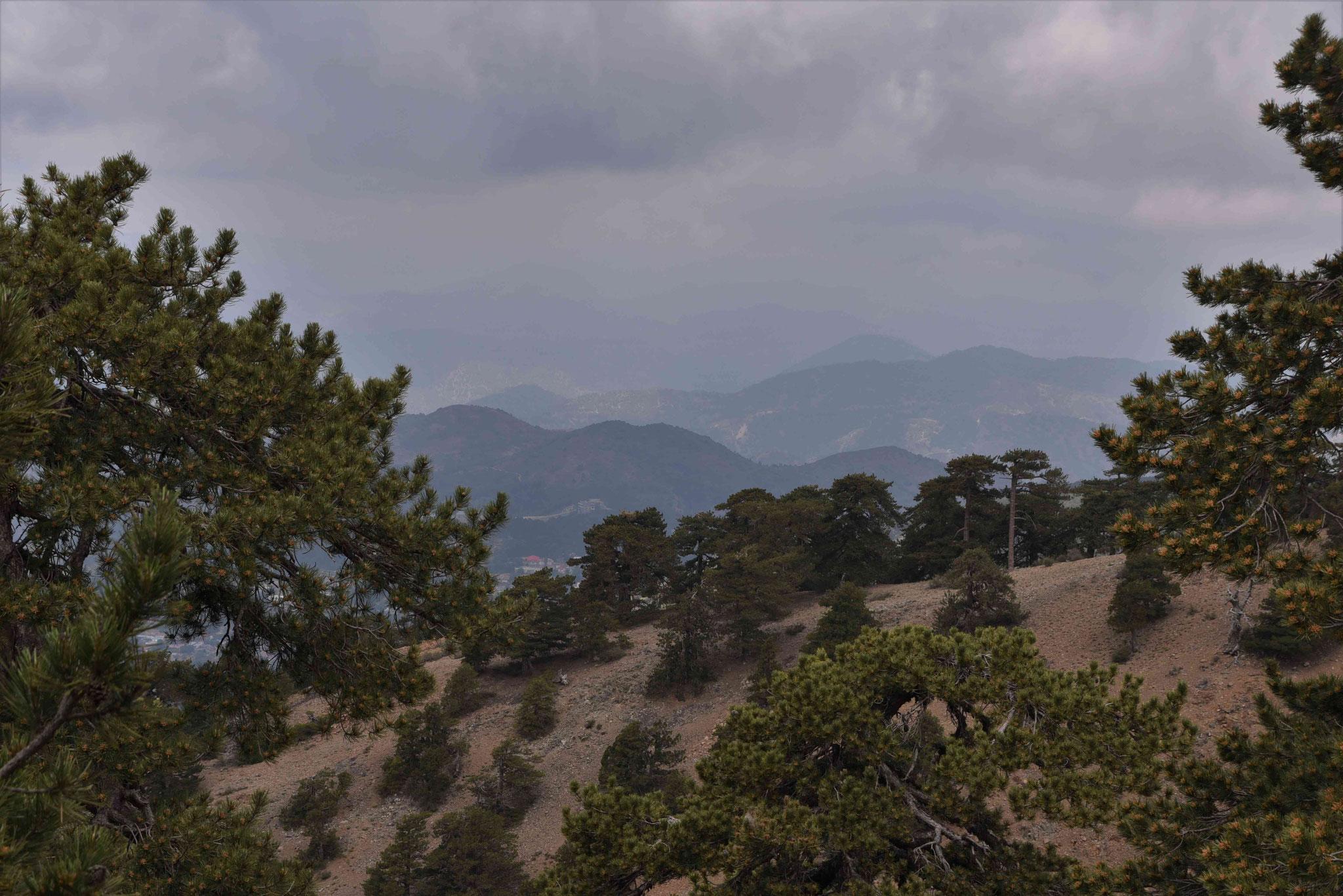 Blick über das Tróodos-Gebirge II