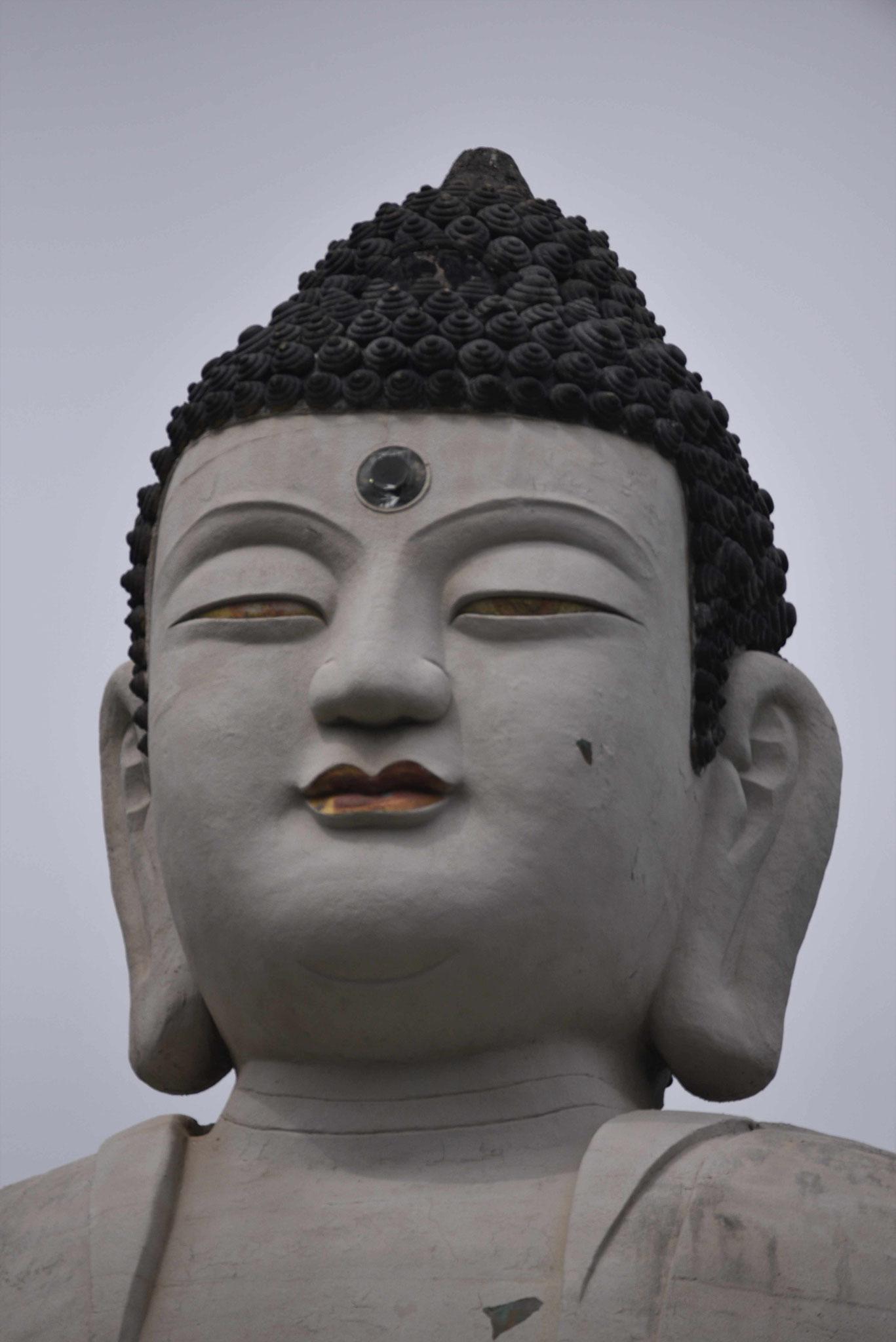 Kopf des Buddas