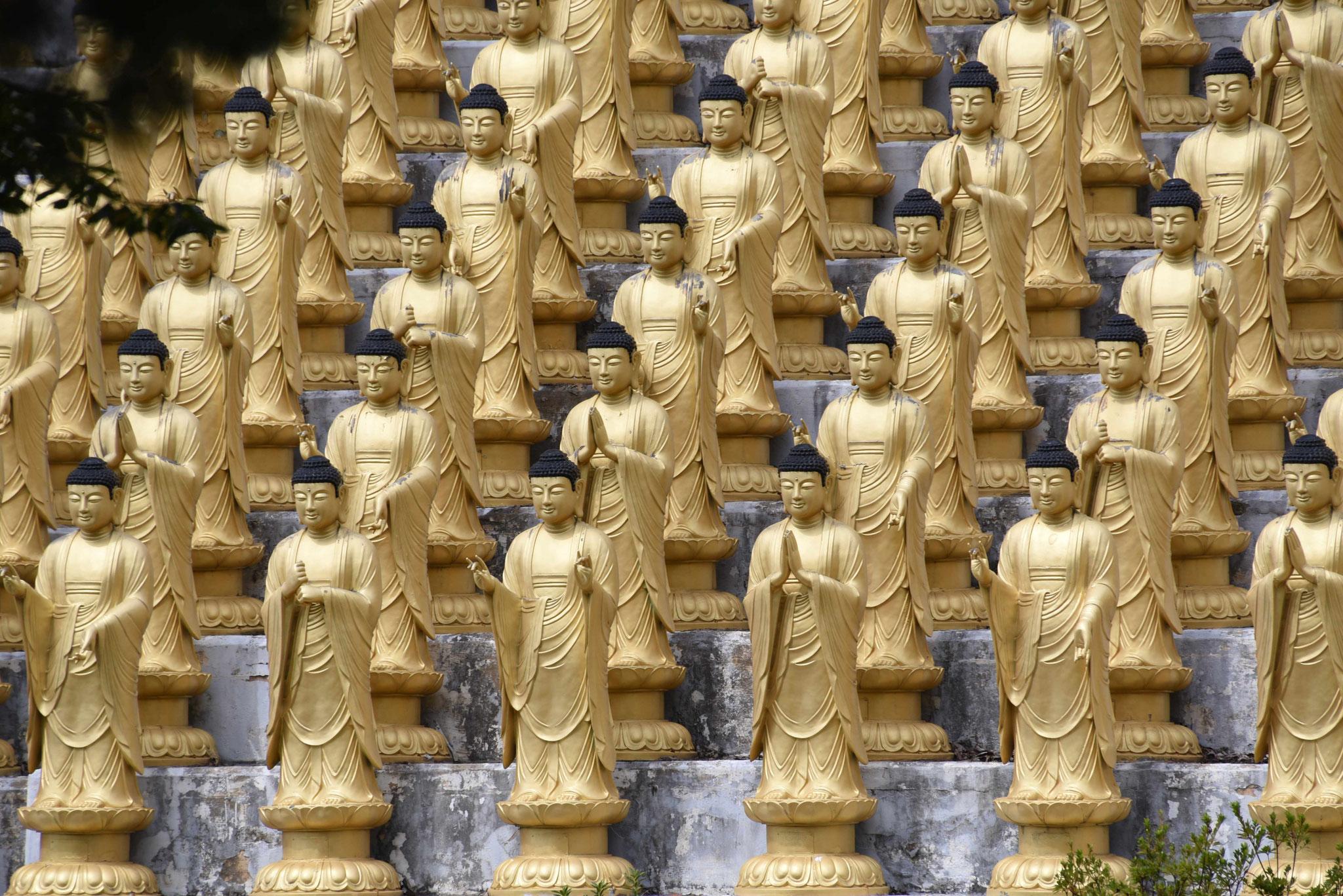 Kleiner Einblick von 1000 Statuen