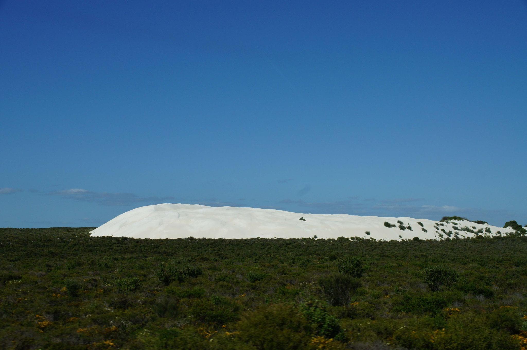 Sanddüne im Landesinnern von Western Australia