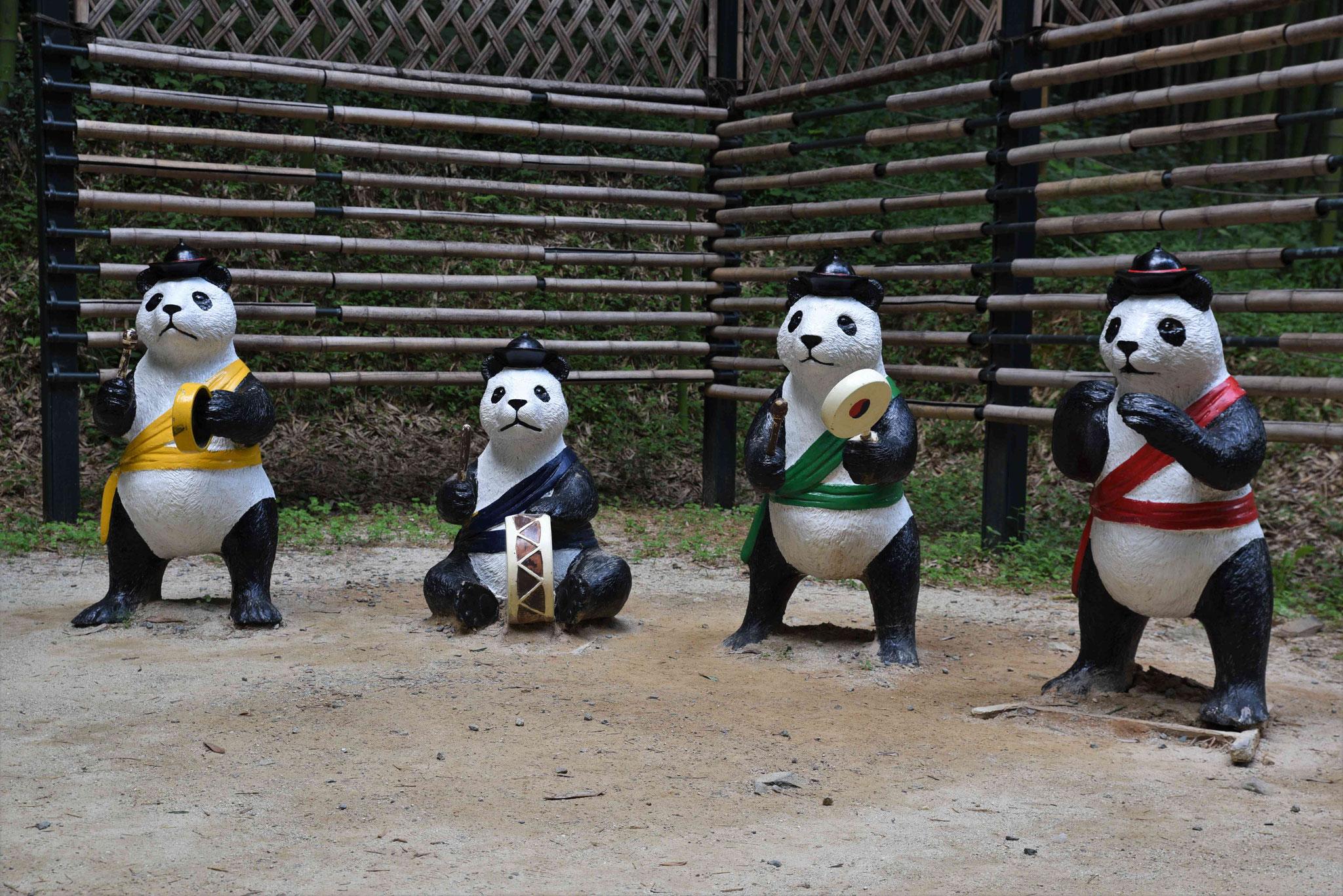 Combogruppe - die fantastischen Pandas ?
