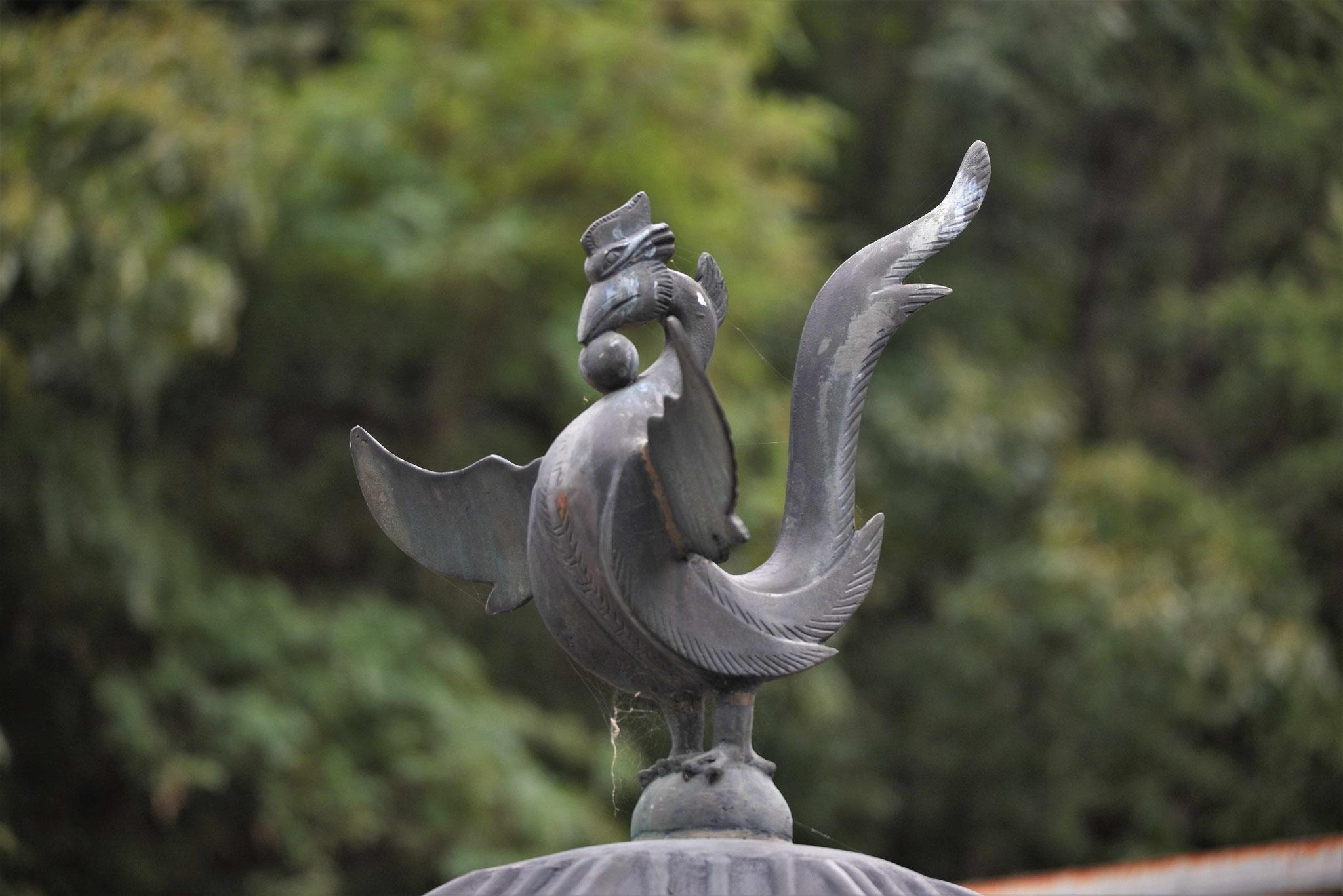 Den Adler sieht man auch hier öfter