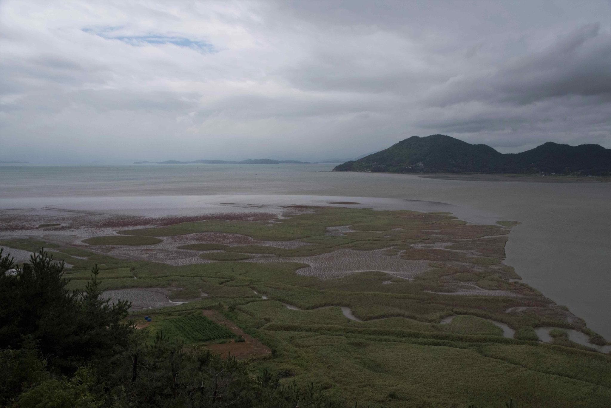 Ausgedehnte Wattlandschaft in der Suncheon Bay