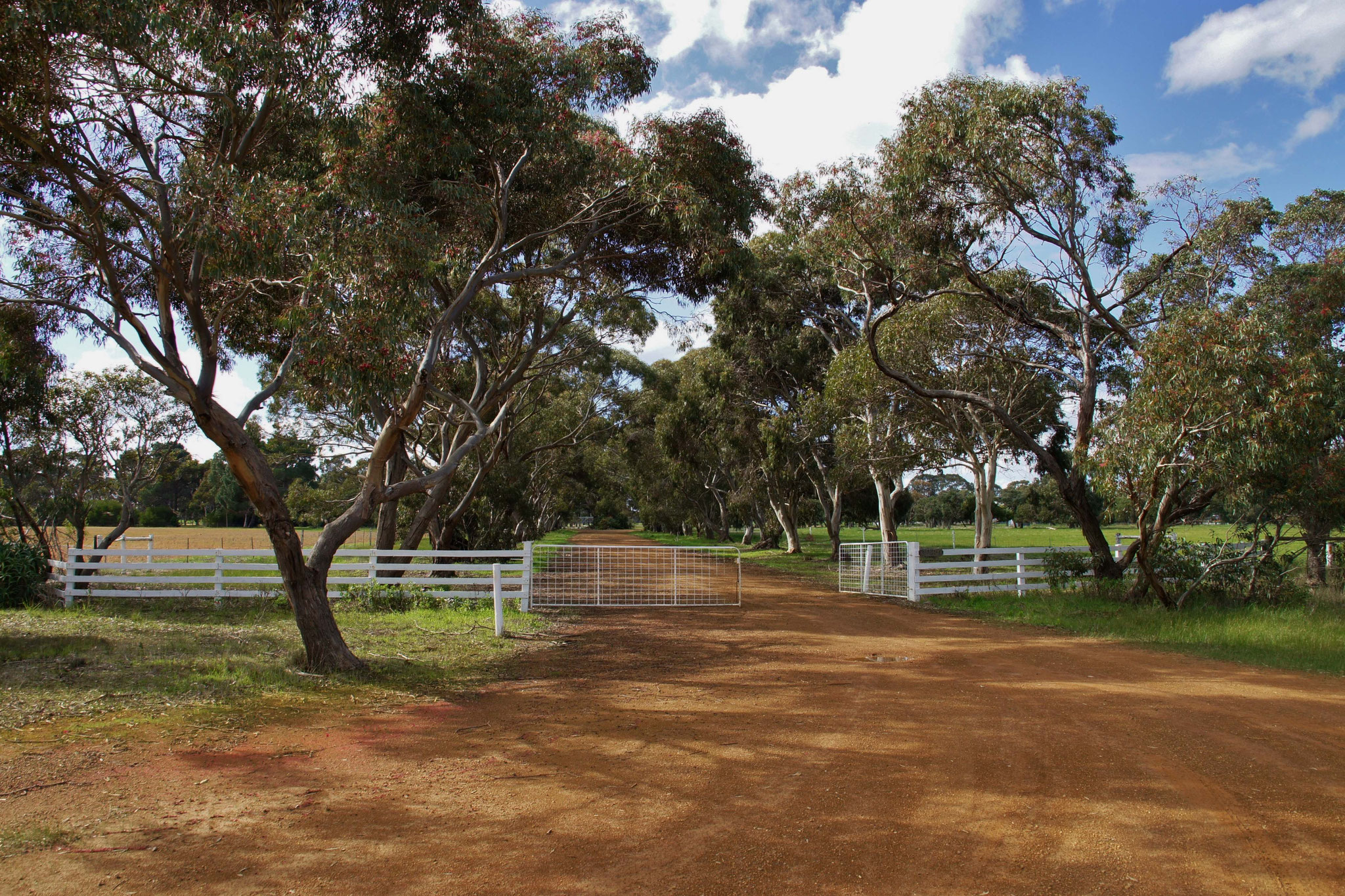 Einfahrt auf eine große Farm