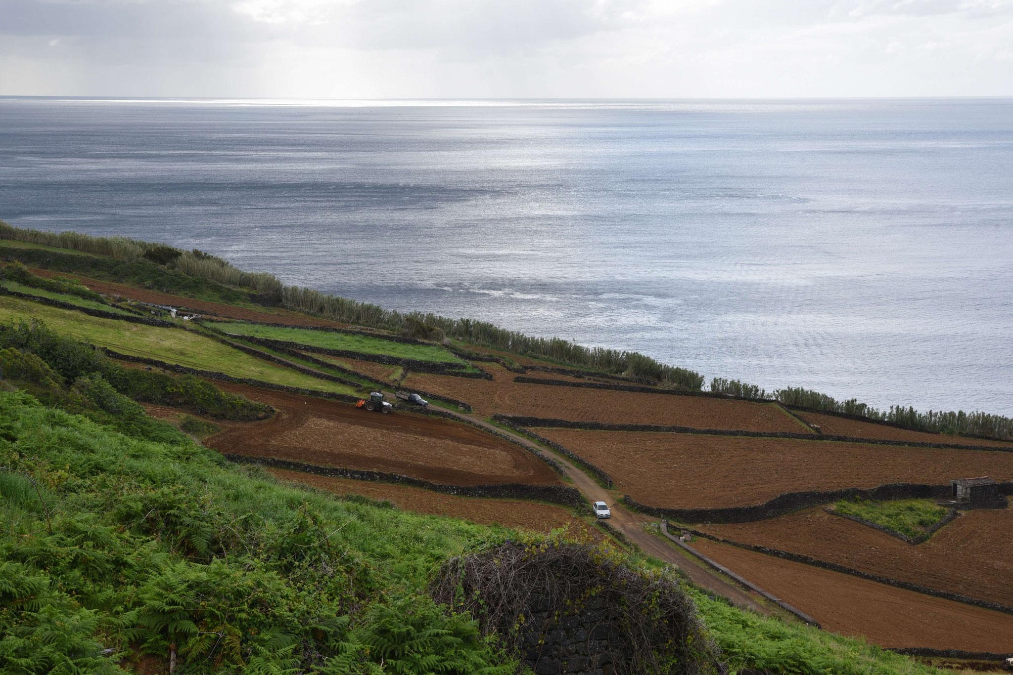 Fruchtbarer Boden für die Landwirtschaft (an der Südküste)