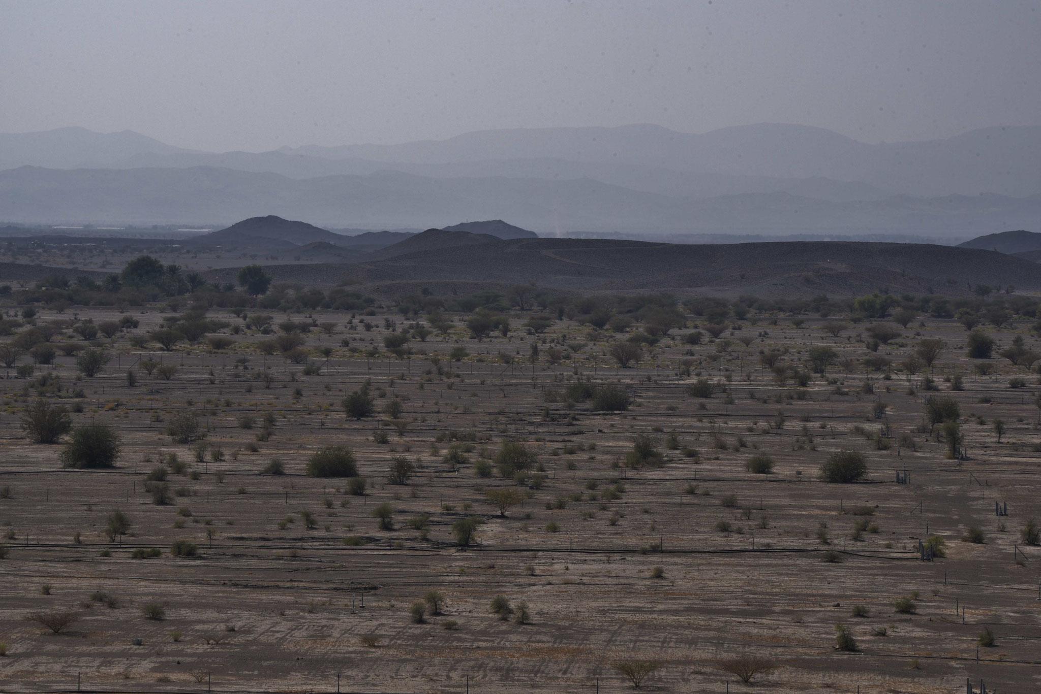 Landschaft bei Jabrin in südwestlicher Richtung