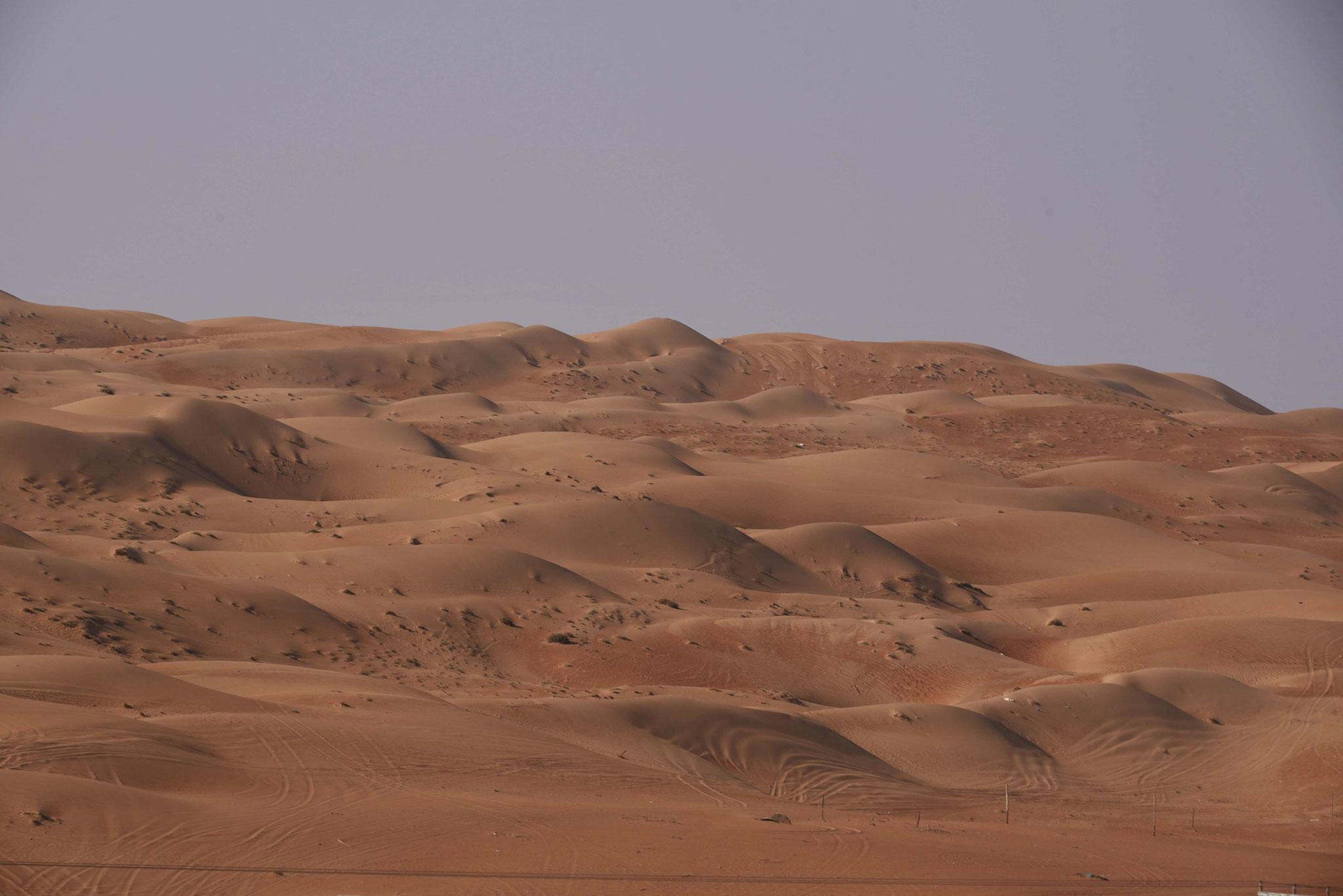 Sanddünen so weit das Auge reicht