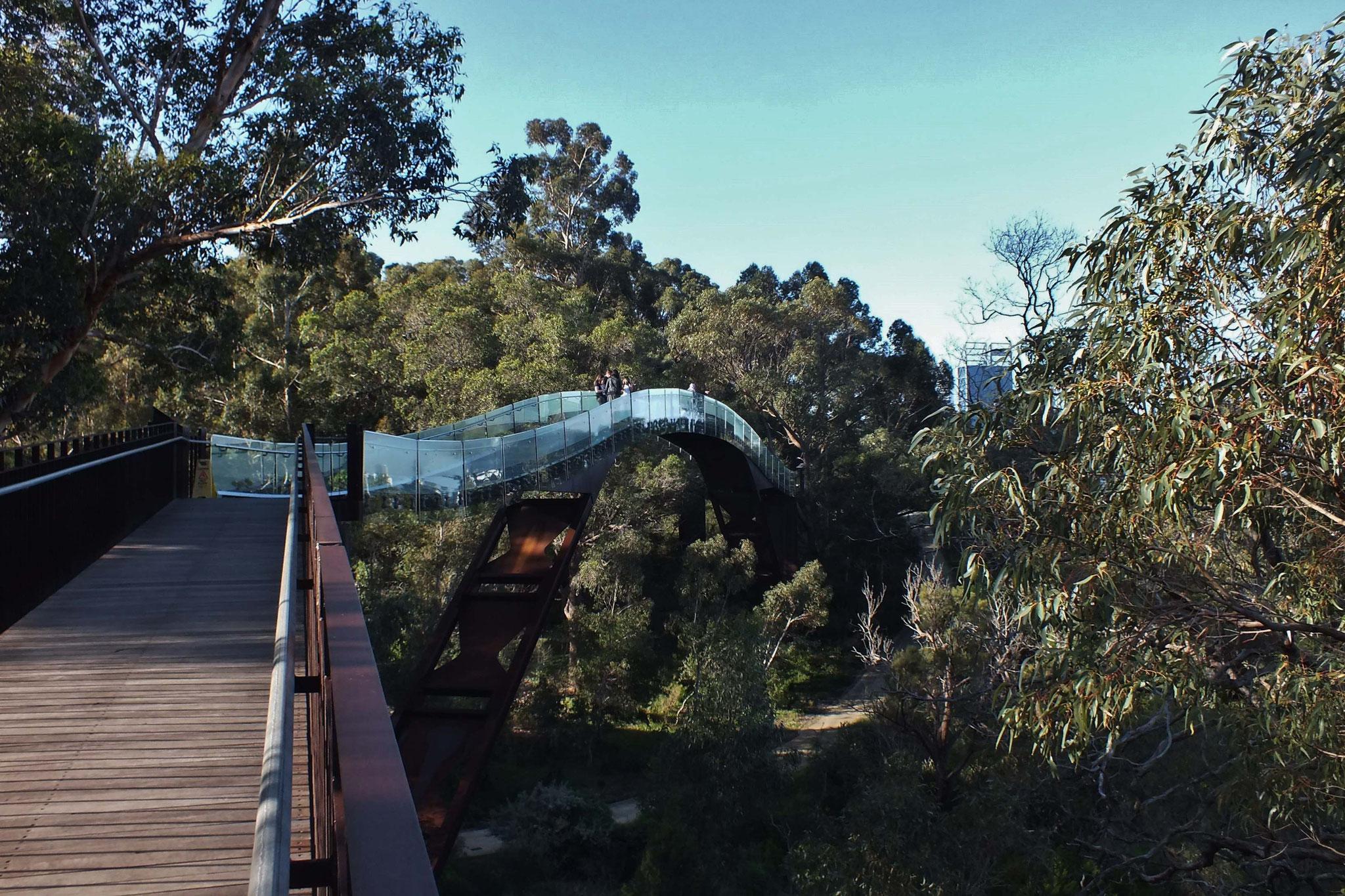 Im Kings Park von Perth, WA