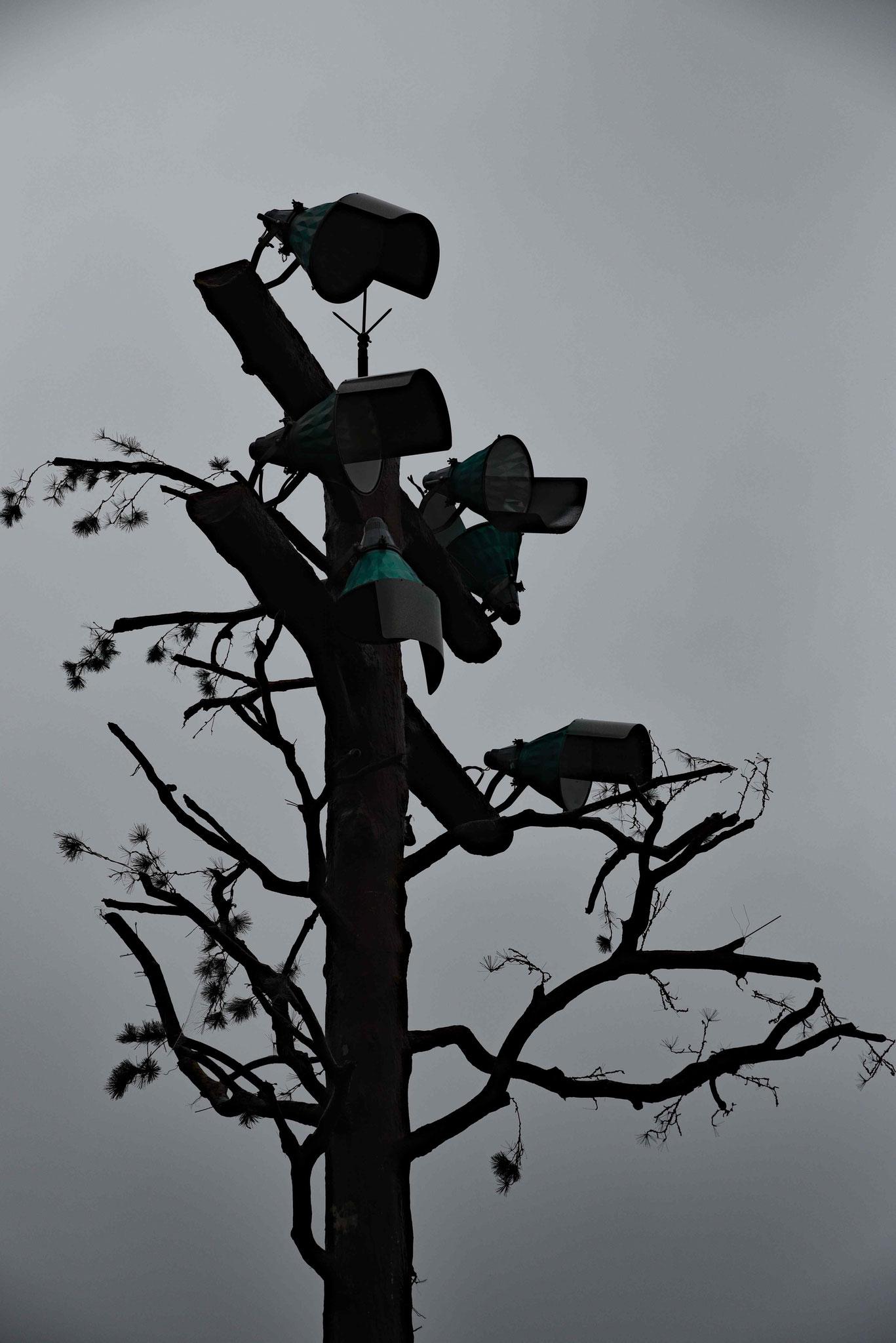 Als Baum getarnte Überwachungskameras