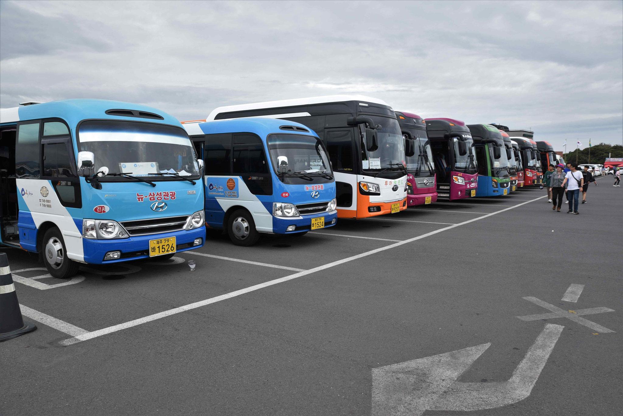 Der Buspark ist komplett gefülllt - und das in der Nebensaison!